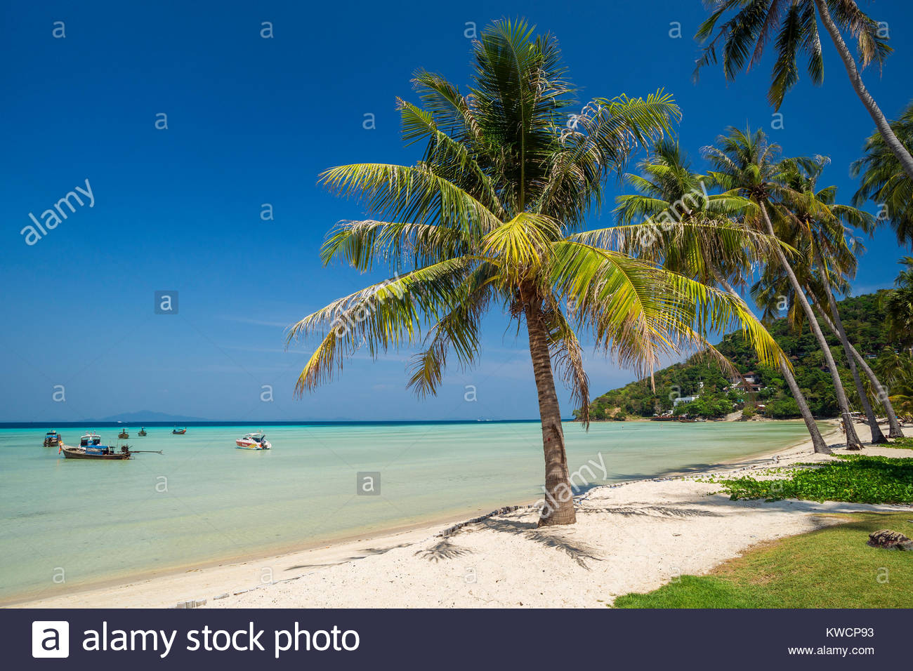 Loh Bagao Bay - Koh Phi Phi Don - Thailand Stock Photo