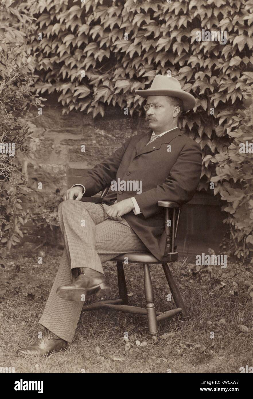 New York Governor Theodore Roosevelt in informal portrait of July-August 1900. He is seated in front of an ivy covered - Stock Image