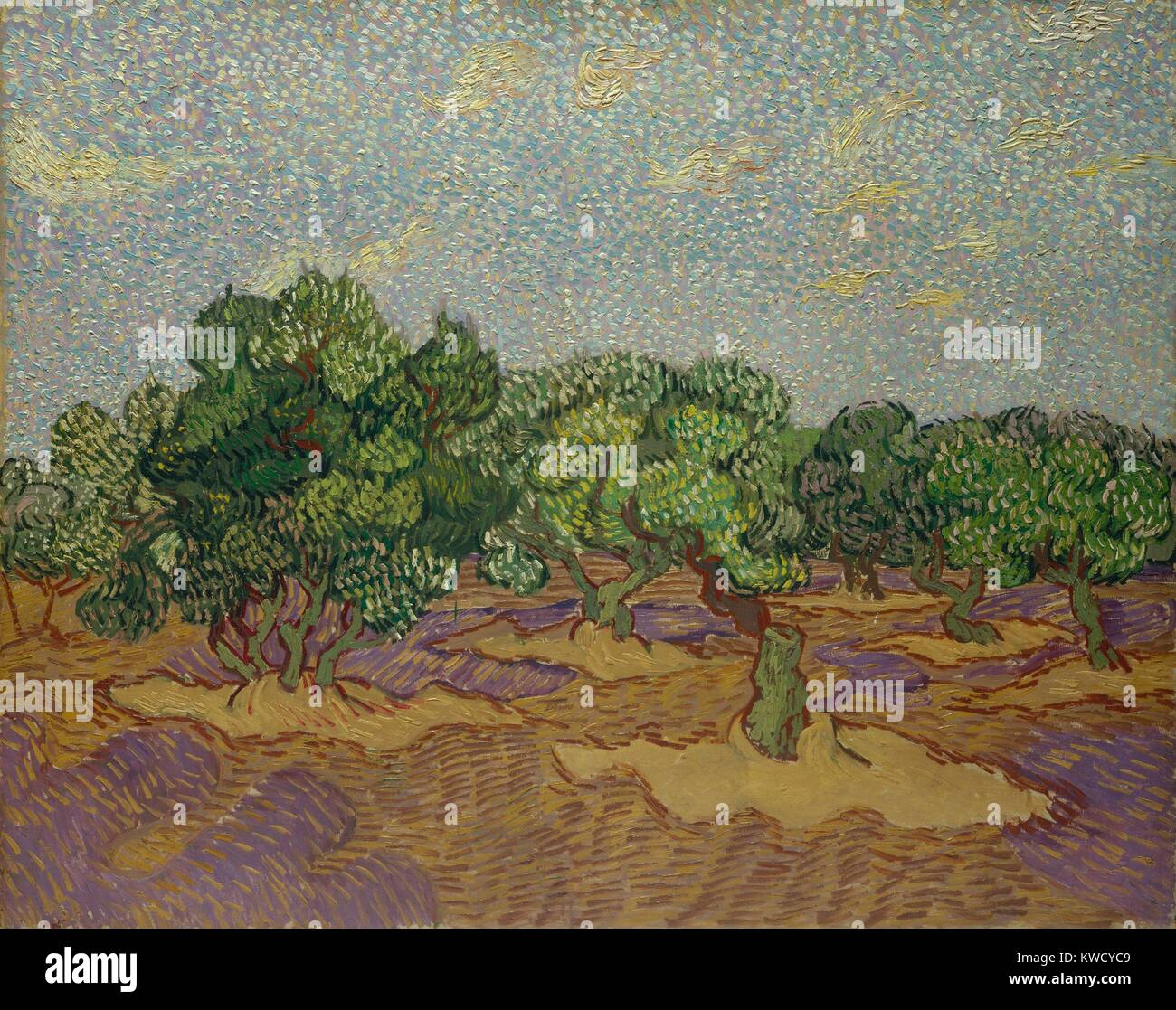 Olive Trees, by Vincent Van Gogh, 1889, Dutch Post-Impressionist, oil on canvas. The work was painted directly from - Stock Image