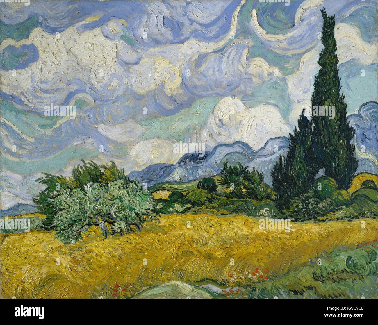 Wheat Field with Cypresses, by Vincent Van Gogh, 1889, Dutch Post-Impressionist, oil on canvas. This was his first - Stock Image