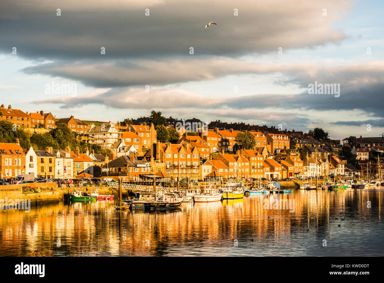 Evening light in Whitby Yorkshire Ray Boswell - Stock Image
