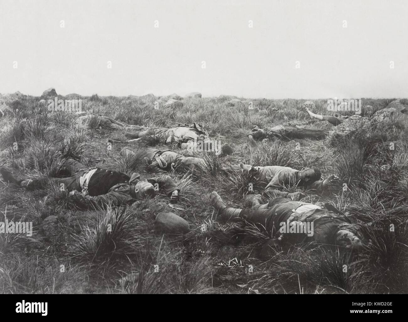 Dead British soldiers on the field after the Battle of Spionkop, Jan. 23-24, 1900. They were part of the force attempting - Stock Image