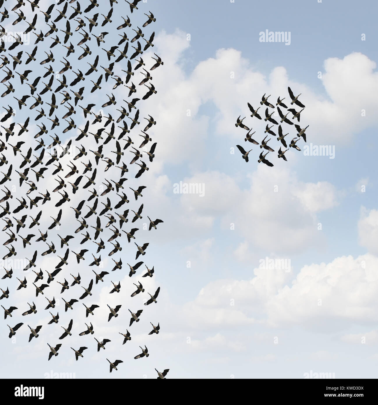 Independent group thinkers concept and new team leadership concept or teamwork individuality as a crowd of flying - Stock Image