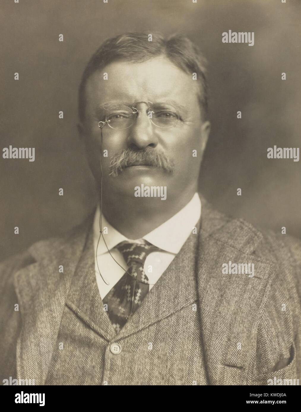 theodore roosevelt new nationalism