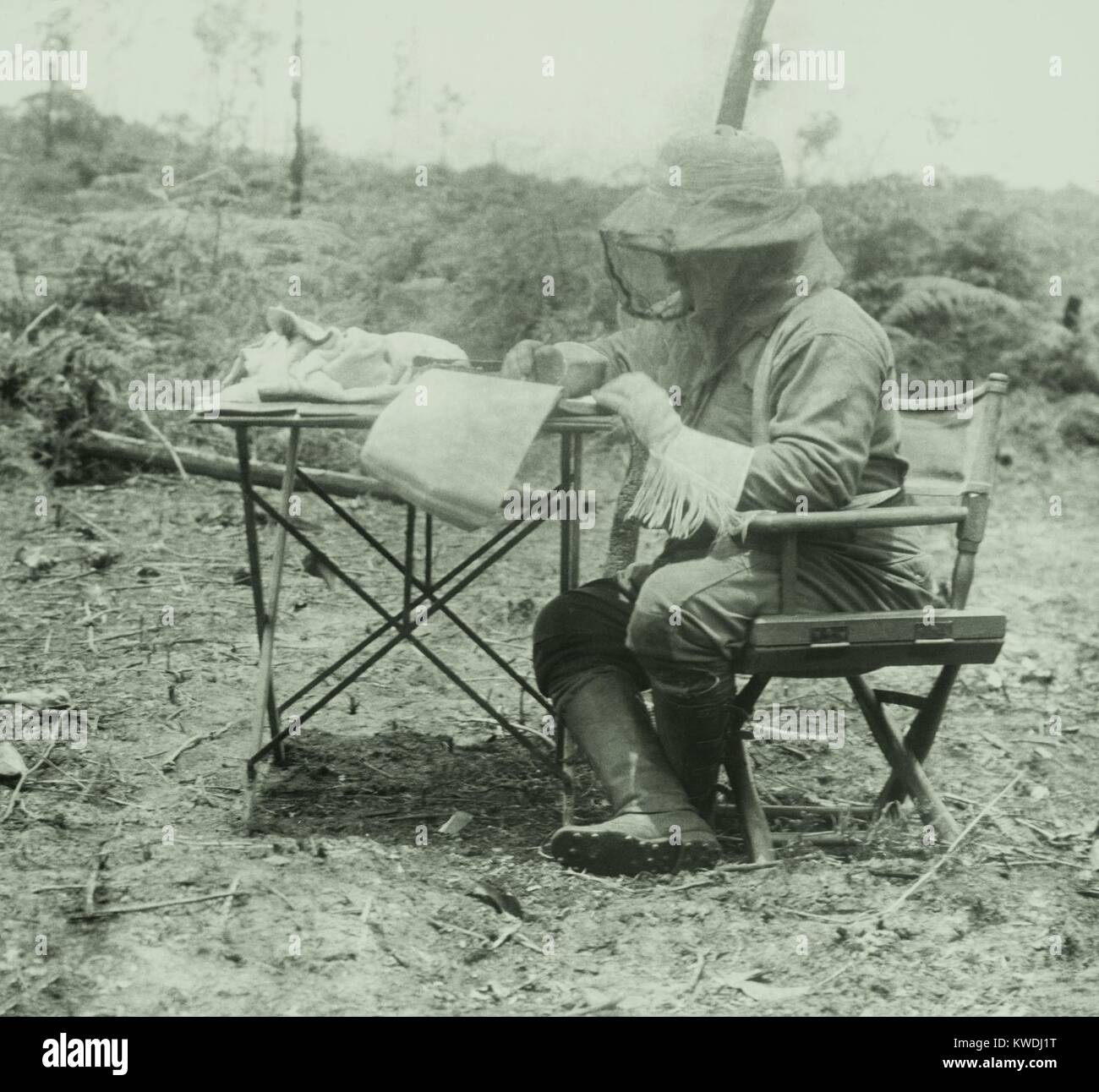 Theodore Roosevelt did his writing in a head net and gloves. He signed a $15,000 book contract to write a book about - Stock Image
