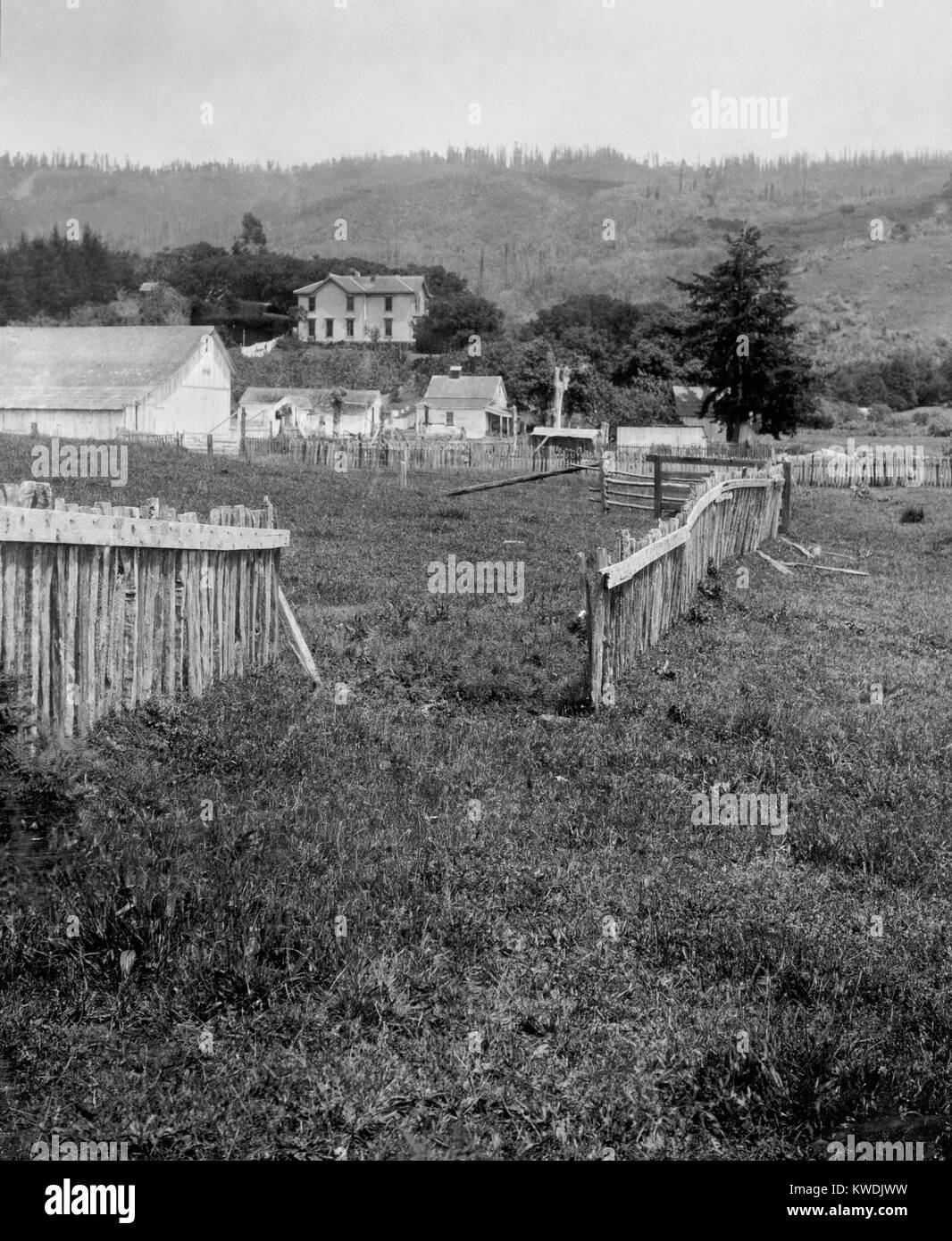 A fence was displaced 8.5 feet near the San Andreas Fault after the April 1906 earthquake. Photo was made a mile - Stock Image