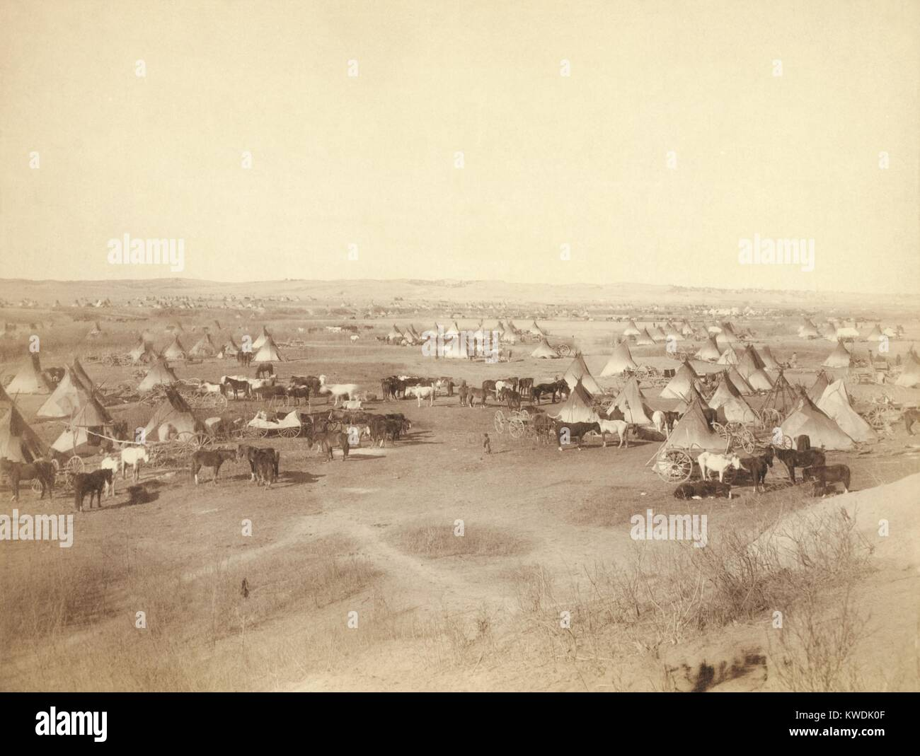 Hostile Indian camp of tipis, horses, and wagons on Pine Ridge Indian Reservation in Jan. 1891. They were considered Stock Photo