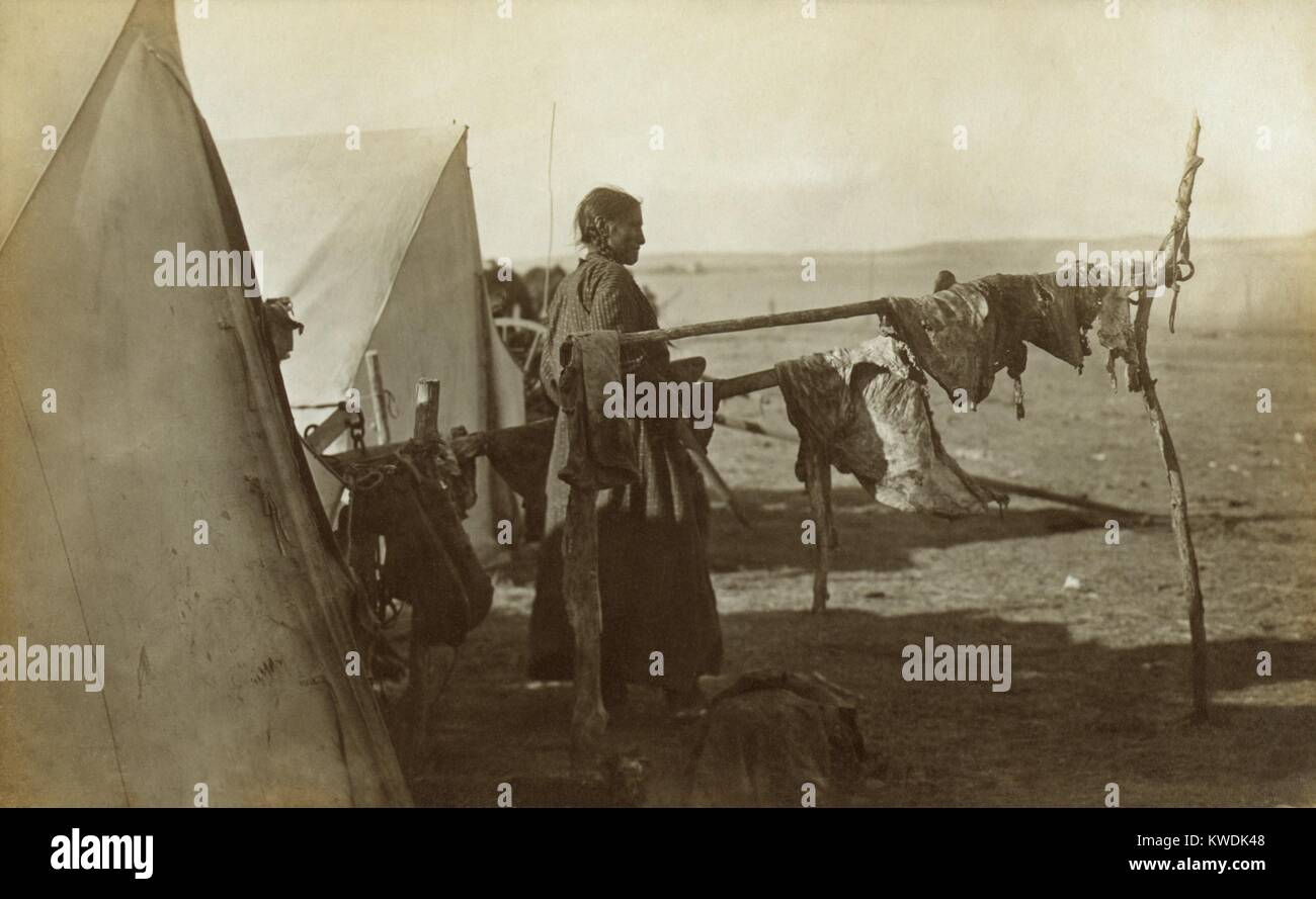 Sioux woman standing between two frames on which meat is being dried, 1908. This traditional preservation method - Stock Image