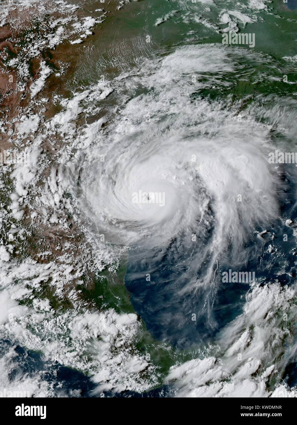 Hurricane Harvey at peak intensity, prior to landfall in southern Texas on Aug.25, 2017. Harvey was the costliest - Stock Image
