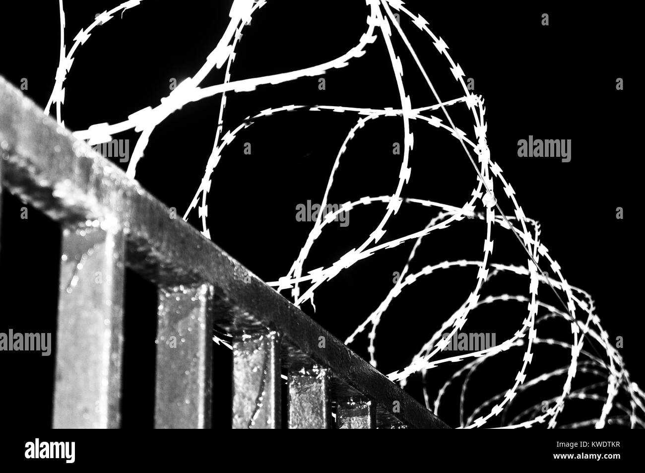 Barbed wire fence on a black background in night, prison, concept of salvation, Refugee, Silent,  lonely,  freedom - Stock Image