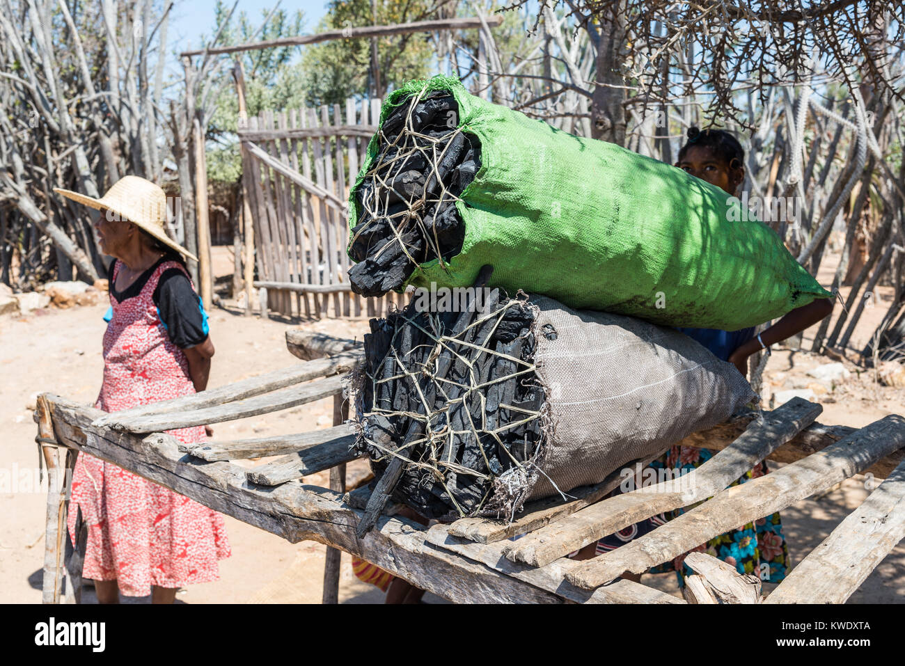 Sacks full of charcoal are for sell for fuel at a roadside stand. Madagascar, Africa. - Stock Image