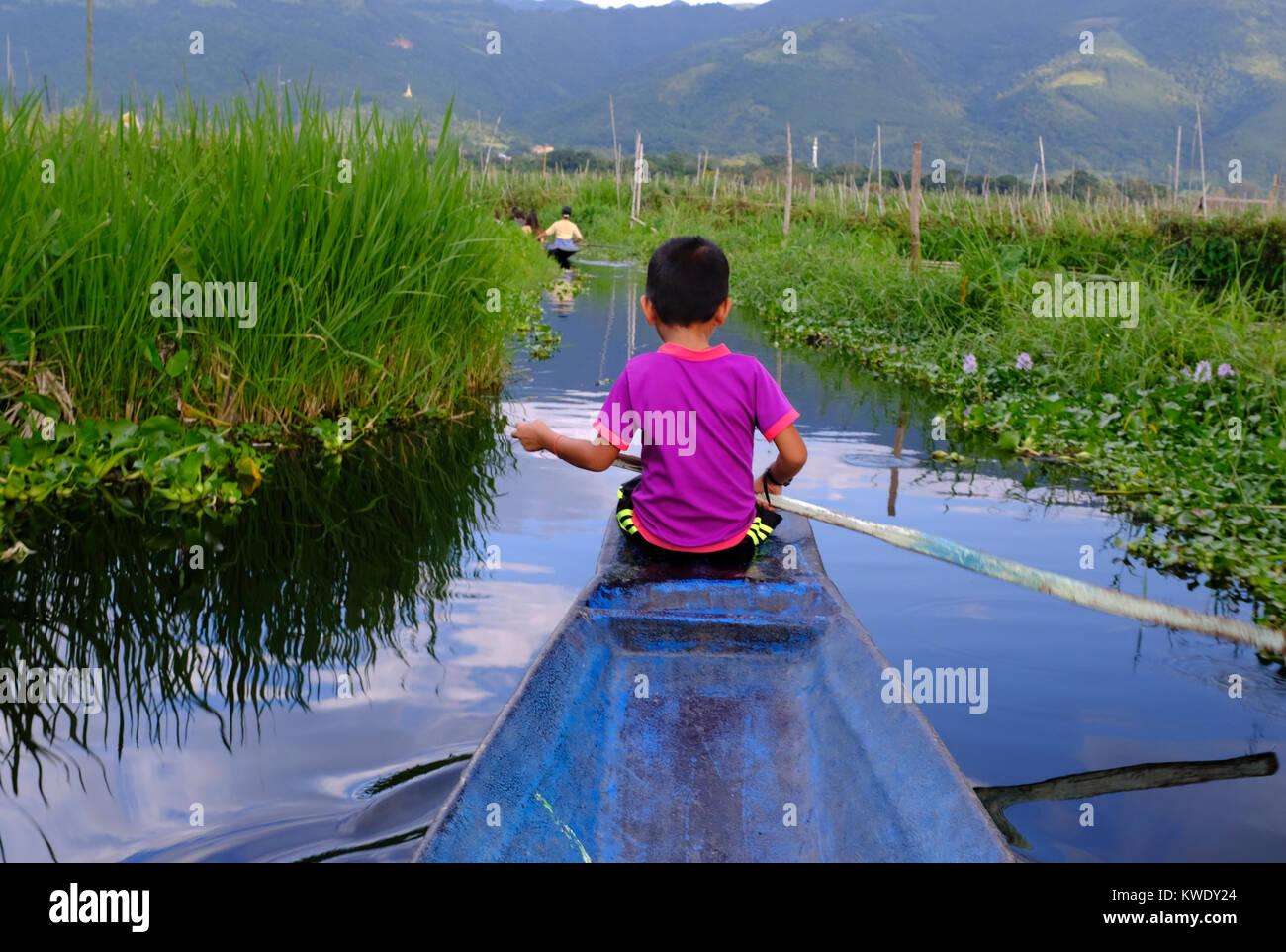 Little boy guiding long boat on Inle Lake, Myanmar - Stock Image