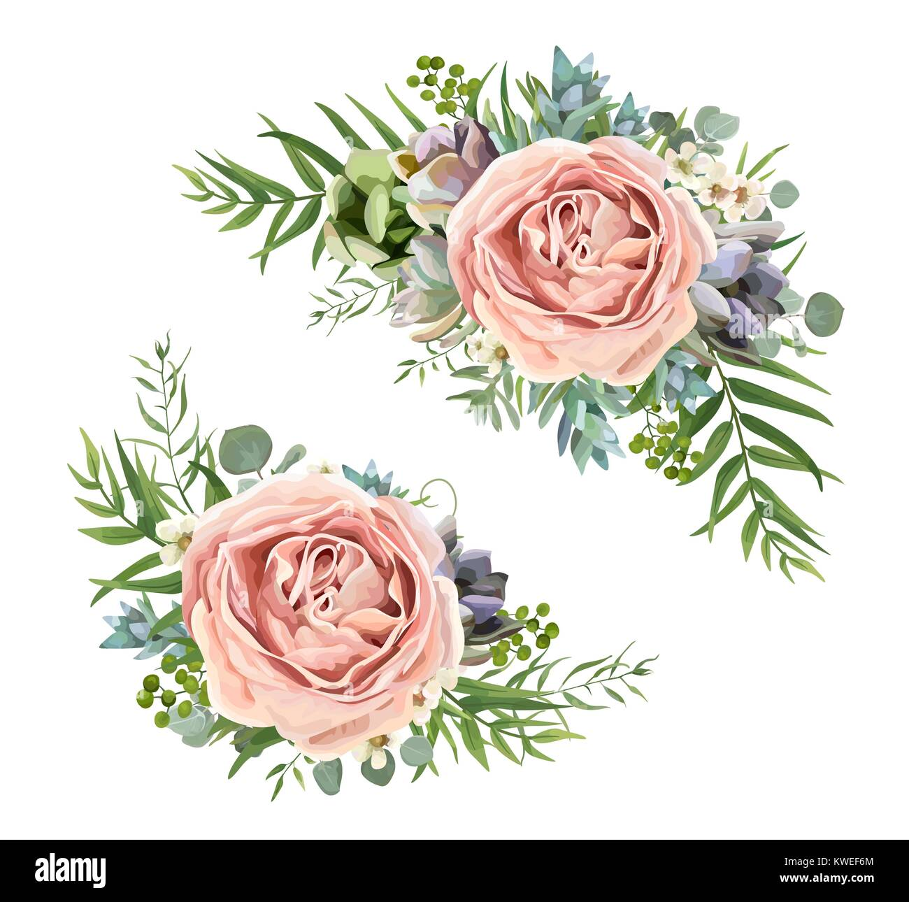 Vector floral bouquet design: garden pink peach lavender Rose wax flower, Eucalyptus branch, green fern palm leaves, - Stock Vector