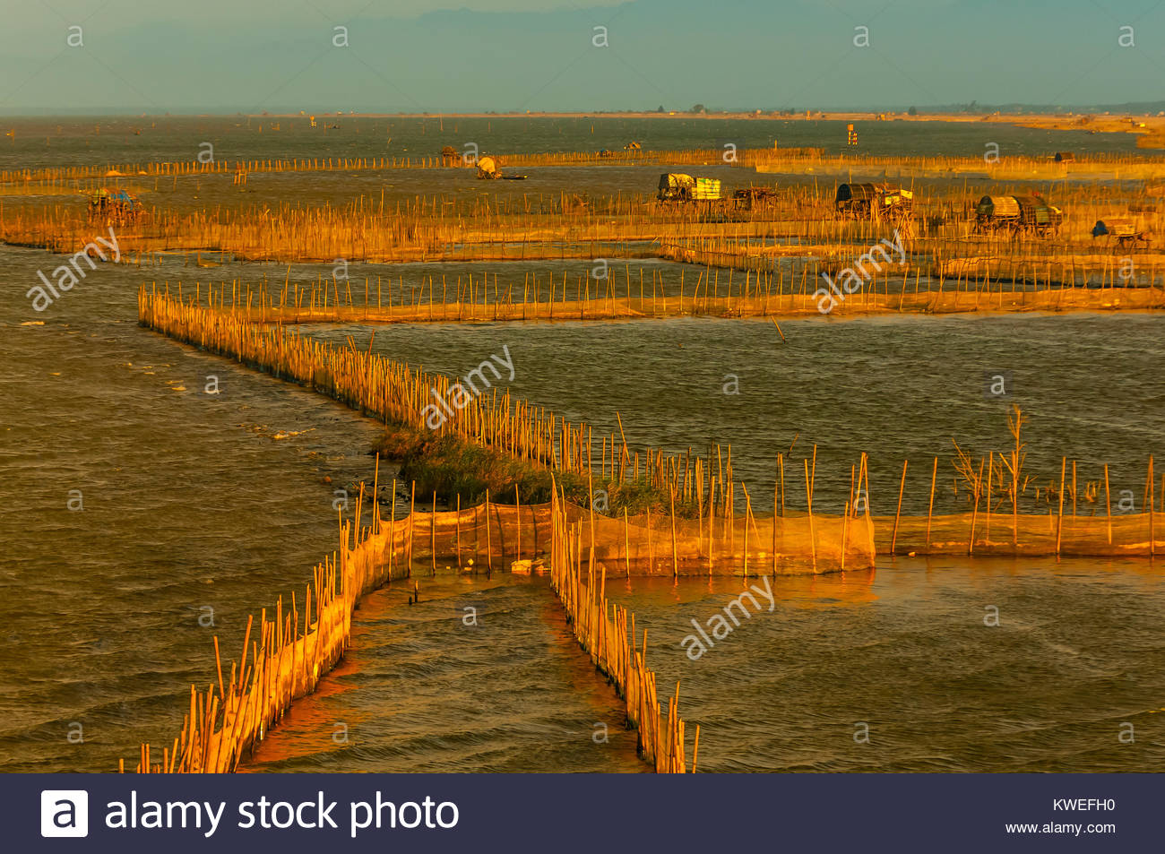 Fish farms, in countryside outside Hue, Central Vietnam. - Stock Image
