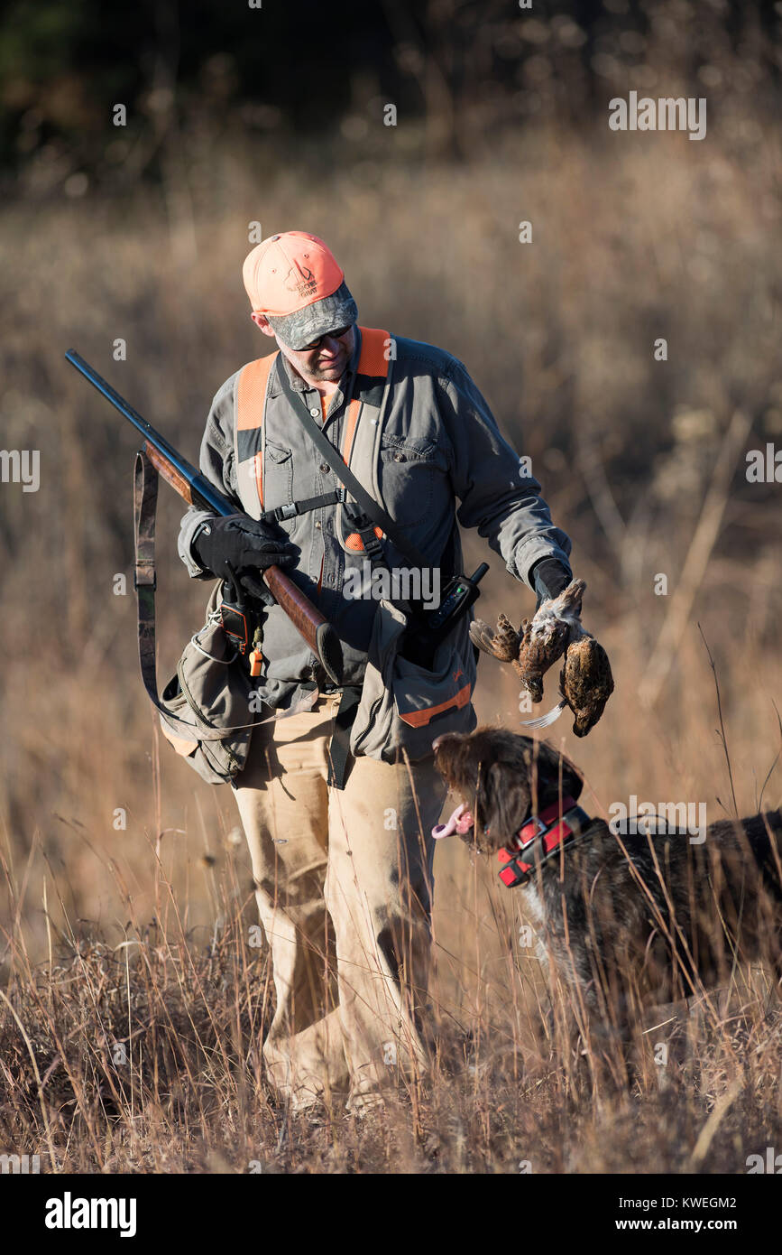 A quail hunter in Kanas on a late autumn afternoon Stock Photo