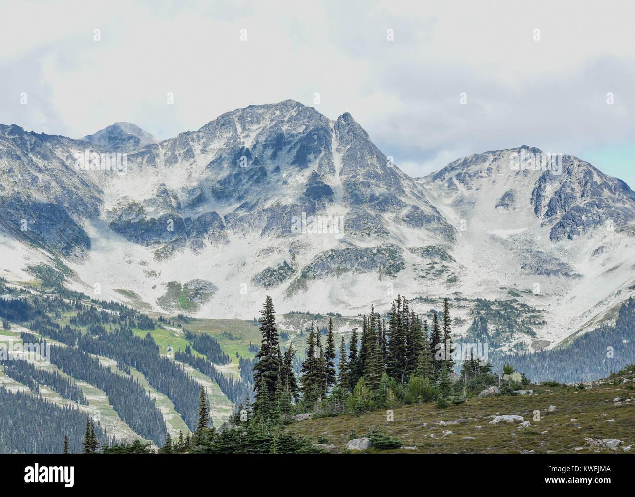 Summer on Whistler Blackcomb British Columbia Mountains fog & clouds enshroud the pine / fir trees and gondola - Stock Image