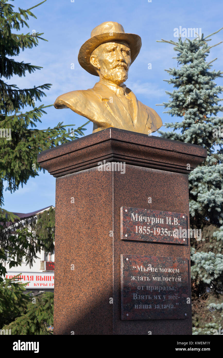 Michurinsk, Tambov region, Russia - July 24, 2017: Bust to Ivan Vladimirovich Michurin in the city of Michurinsk, - Stock Image