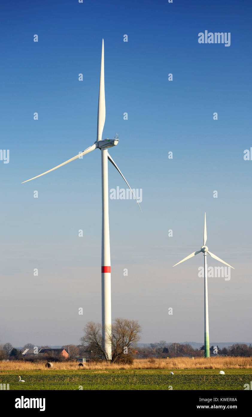 Wind turbines of different size in the wind park new narrow nurse, 4 and marshy land, Hamburg, Germany, Europe, - Stock Image