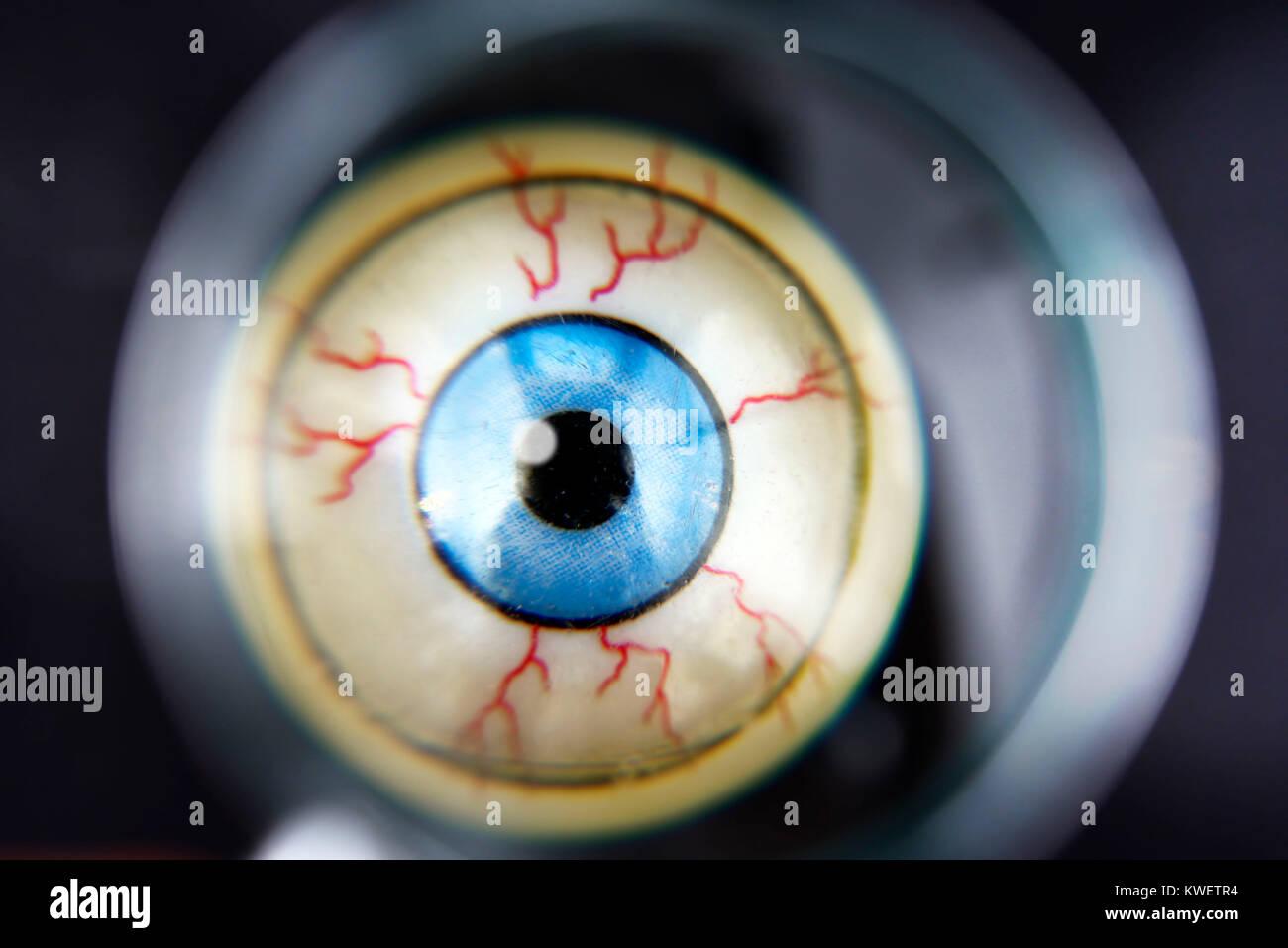 Eye under the magnifying glass, symbolic photo Federal Intelligence Service scandal, Auge unter der Lupe, Symbolfoto - Stock Image