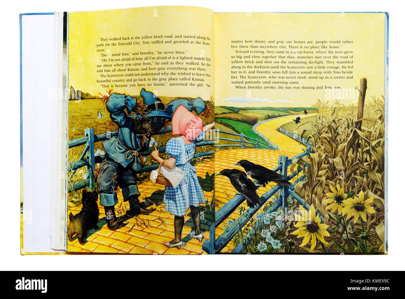 Dorothy and Scarecrow on the Yellow Brick Road in an Illustrated book of The Wizard of Oz - Stock Image
