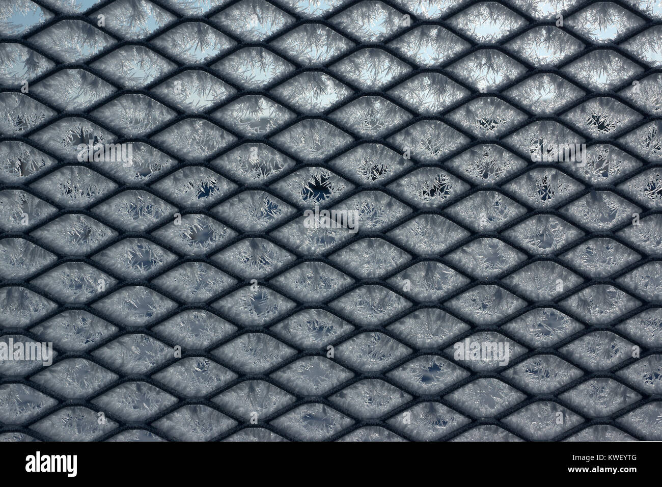 Steel Wire Mesh Stock Photos & Steel Wire Mesh Stock Images - Alamy