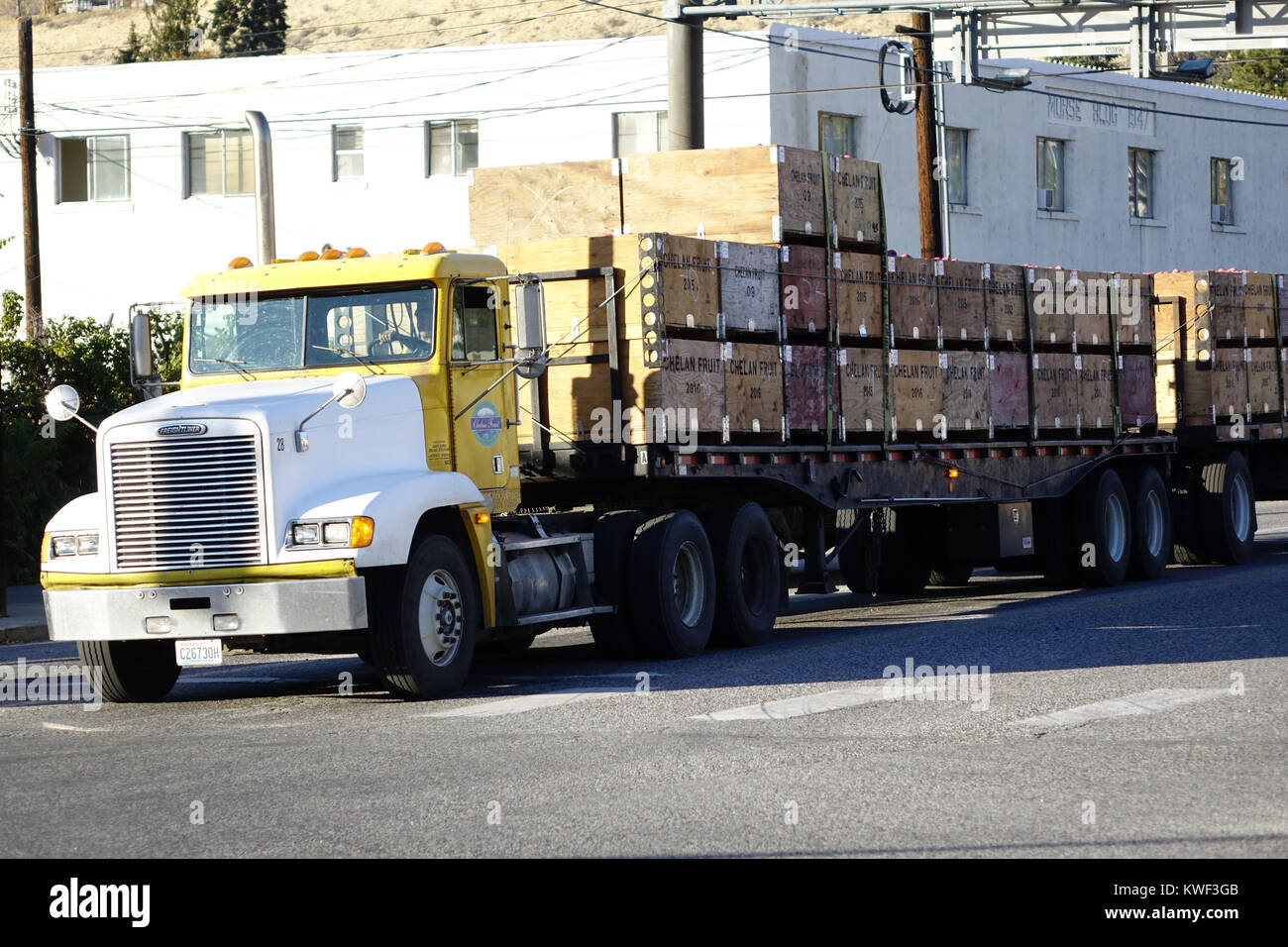A Freightliner semi hauling apples to the apple shed in Chelan, Washington. - Stock Image