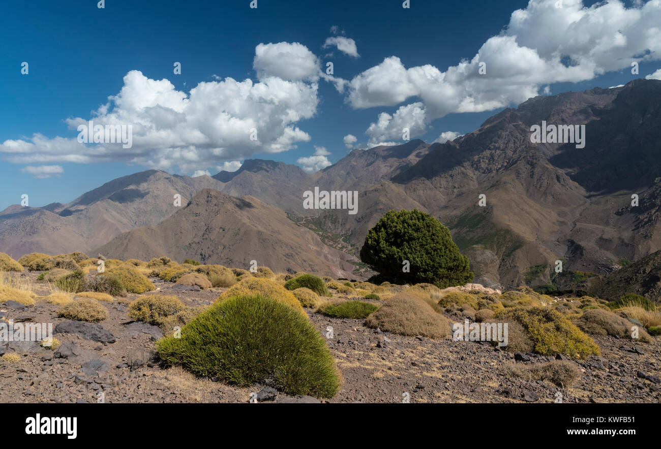 High Atlas mountain habitat at Tasserimoute with sparse vegetation and by skies by Imlil. - Stock Image