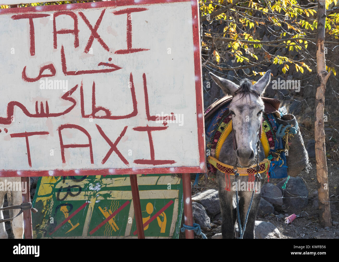 Mule Taxi promotional signage, Imlil, High Atlas. - Stock Image