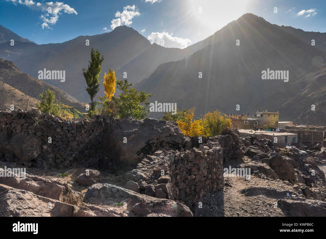View of Aremd, Imili Valley, woth autumnal coloured Poplar trees, Moroccan High Atlas. - Stock Image