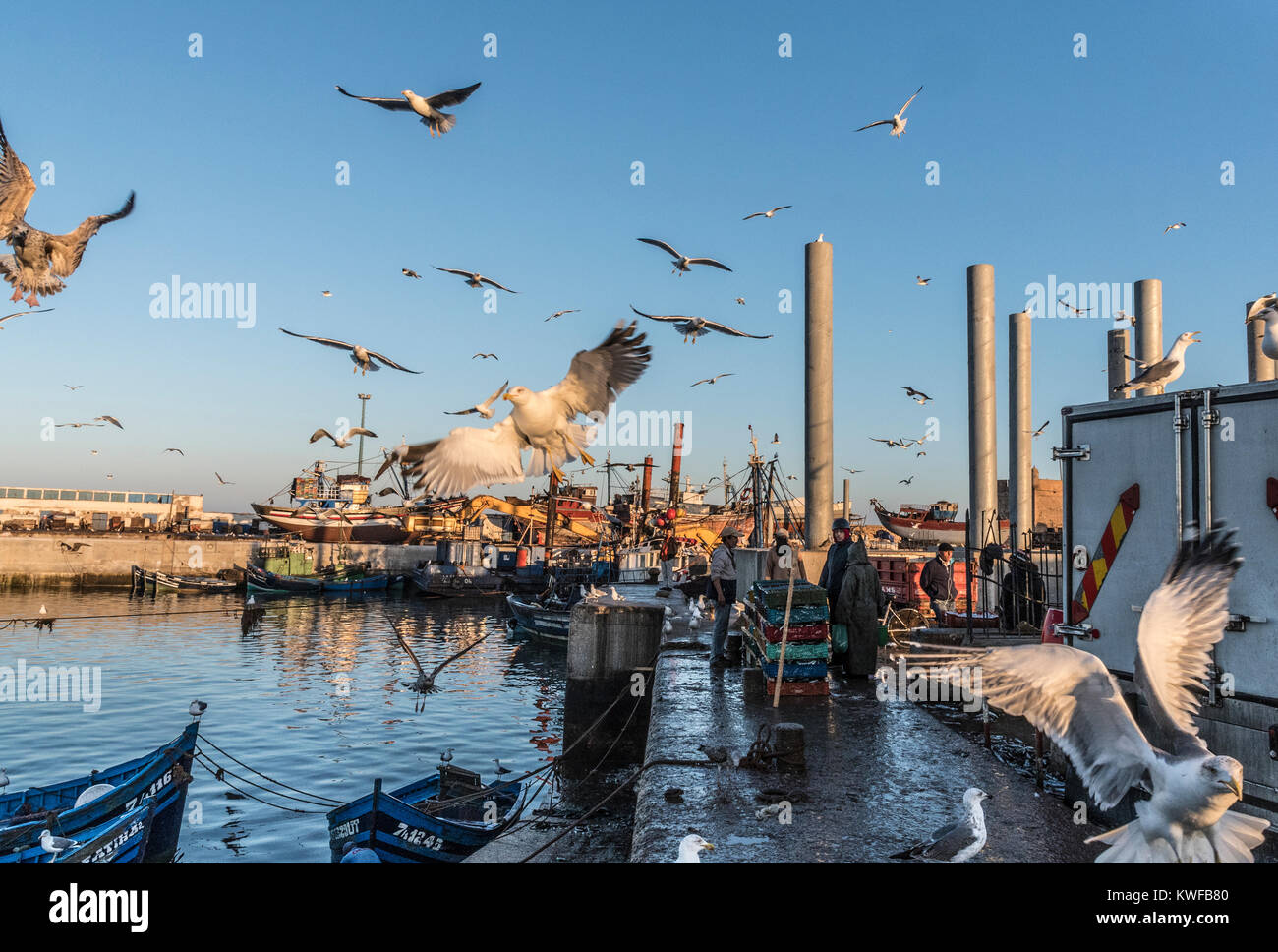 Commericial fishing industry in action around the harbour. - Stock Image