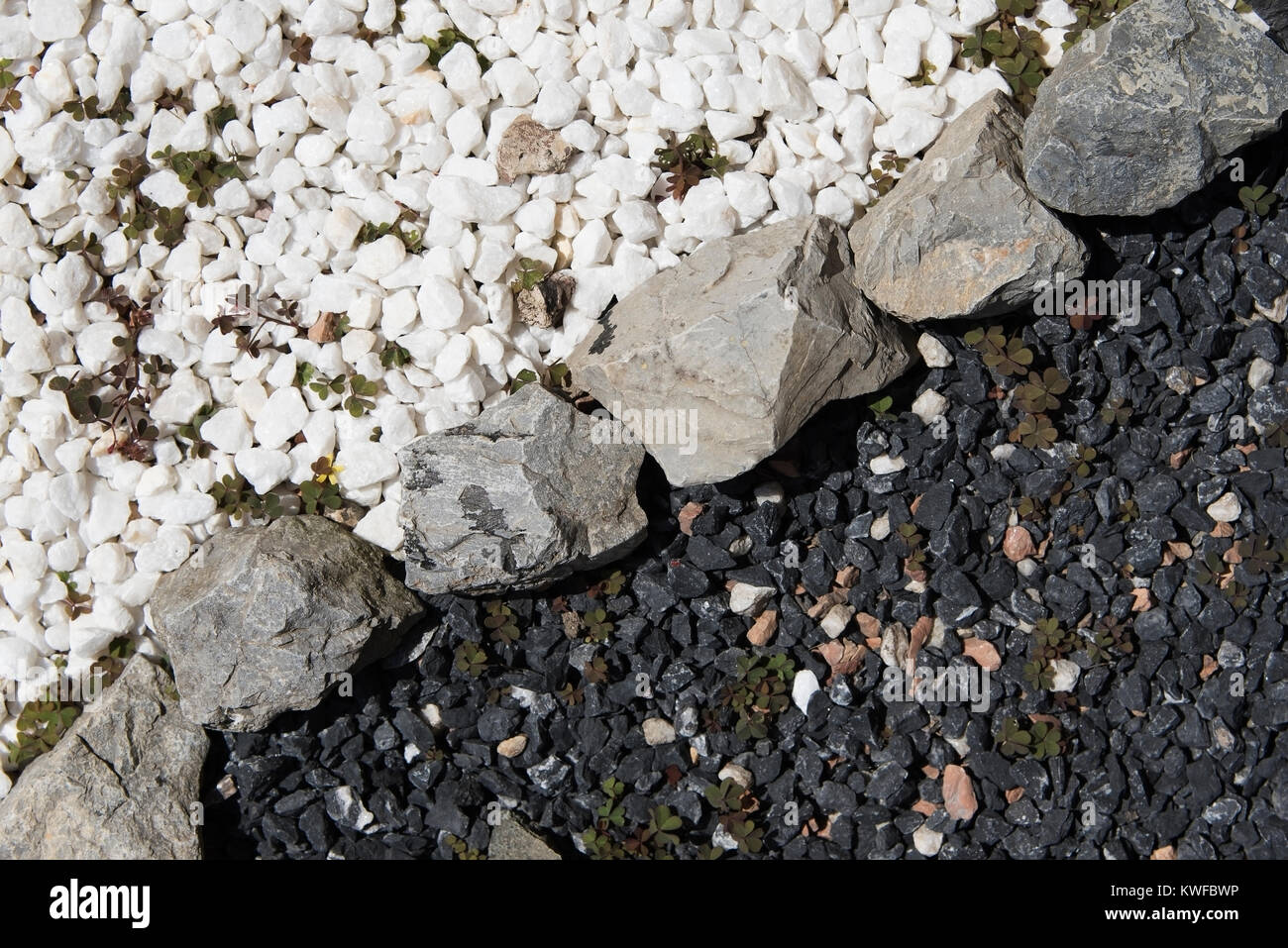 Black And White Decorative Garden Stones Divided Contrasting Each Other    Stock Image