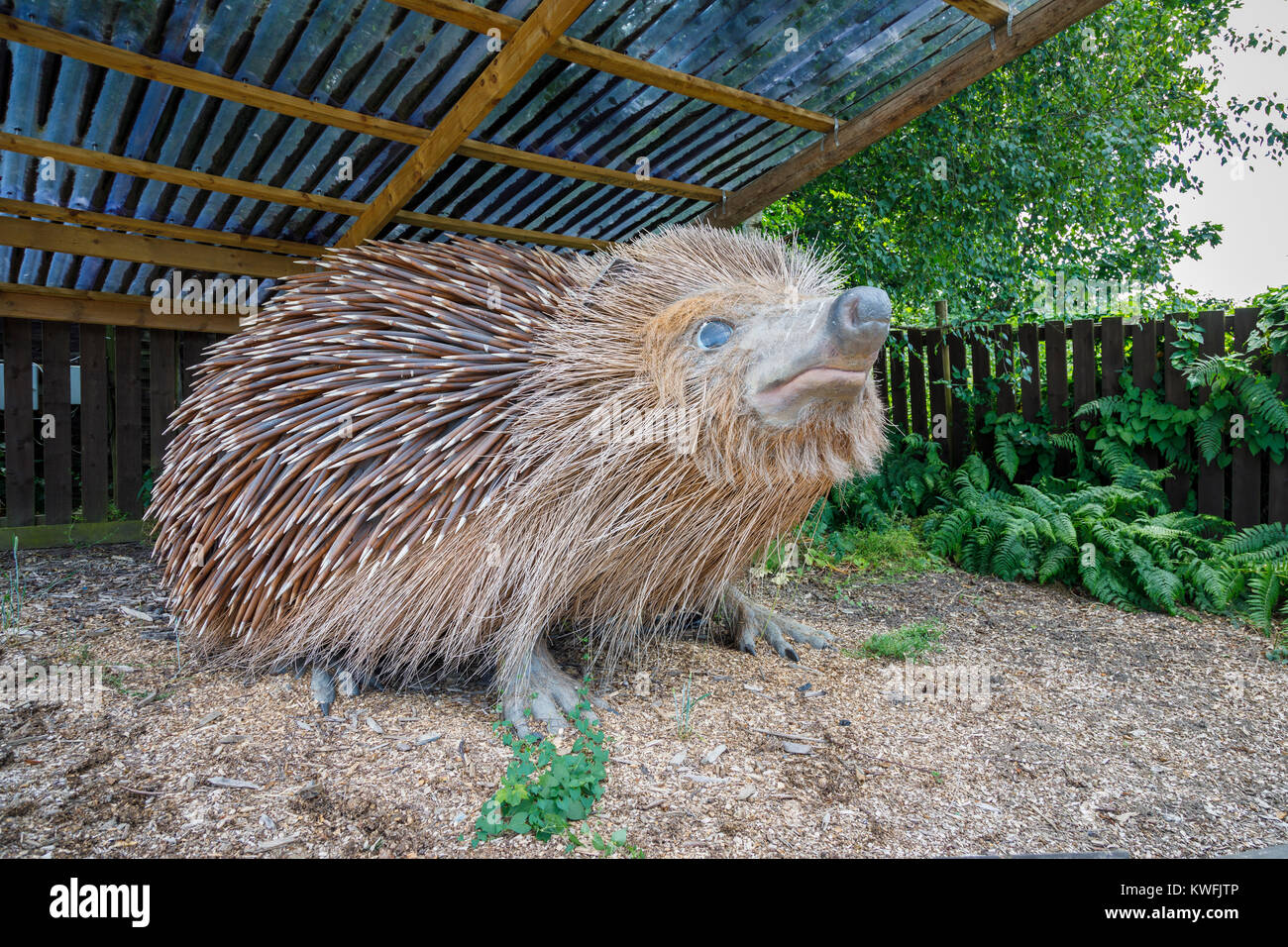 Giant model hedgehog at the entrance to the British Wildlife Centre, a zoo and wildlife sanctuary for native species, - Stock Image