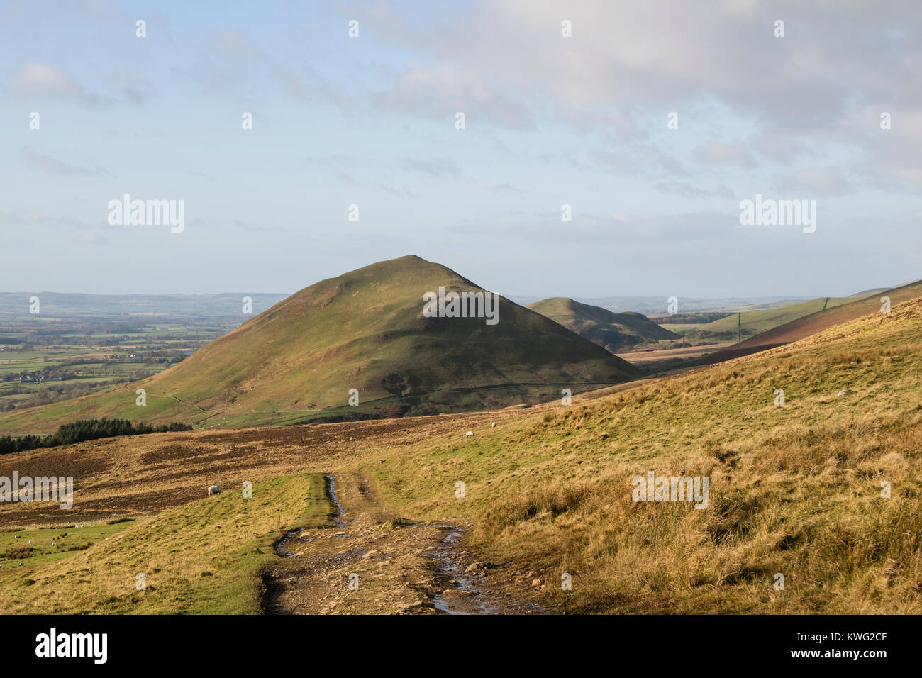 Dufton Pike and Brownber Hill Viewed From the Pennine Way Near Dodd Hill, Eden Valley, Cumbria, UK - Stock Image