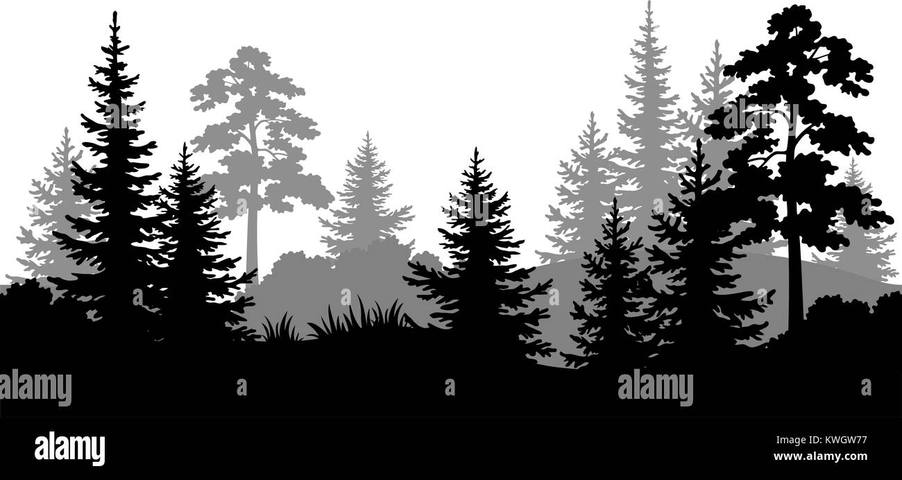 Seamless Background, Summer Forest Silhouettes - Stock Image