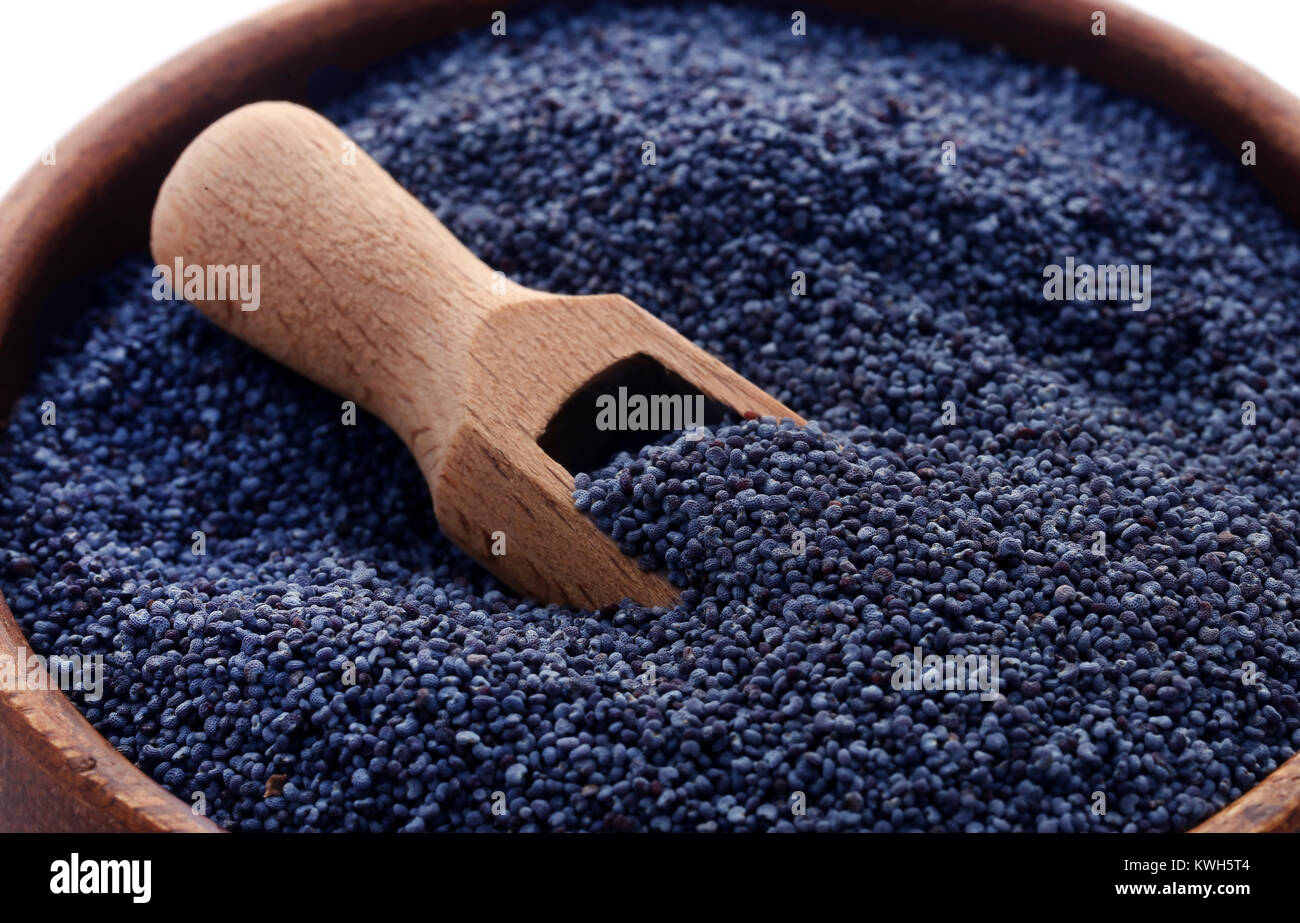 Poppy seeds in a bowl with scoop - Stock Image