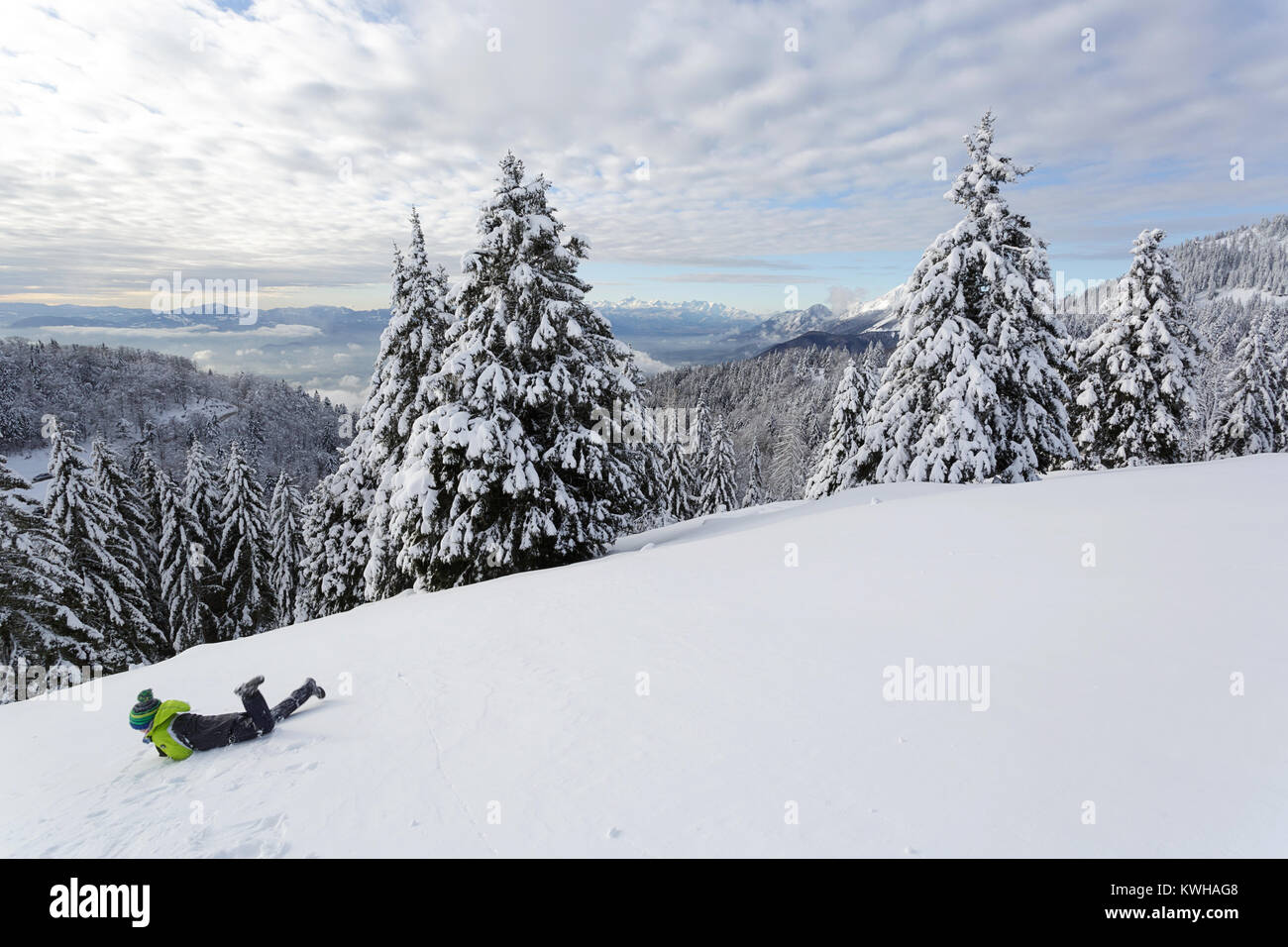Young boy in winter jacket and a beenie lying and rolling in fresh snow on the mountain between frozen spruces, - Stock Image