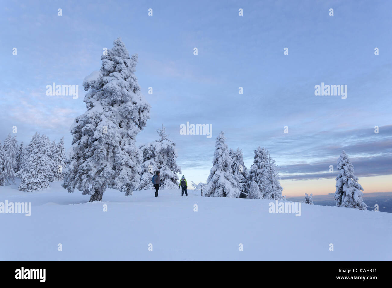 Mother and son standing in fresh snow among frozen spruces on a panoramic mountain in twilight, Krvavec, Slovenia. - Stock Image
