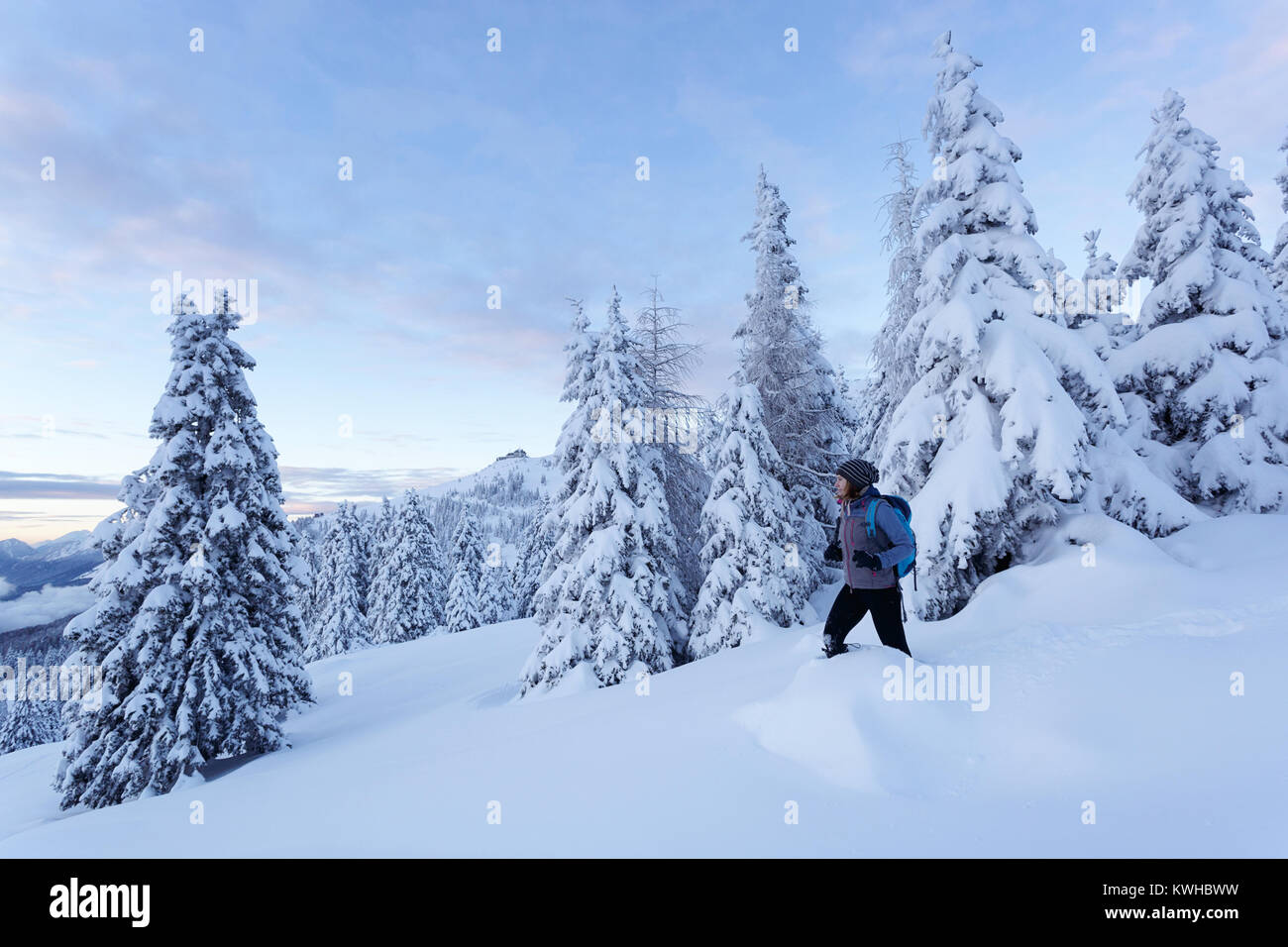 Woman in active outfit hiking downhill  in deep snow on a mountain between spruces covered with snow, Krvavec, Slovenia. - Stock Image