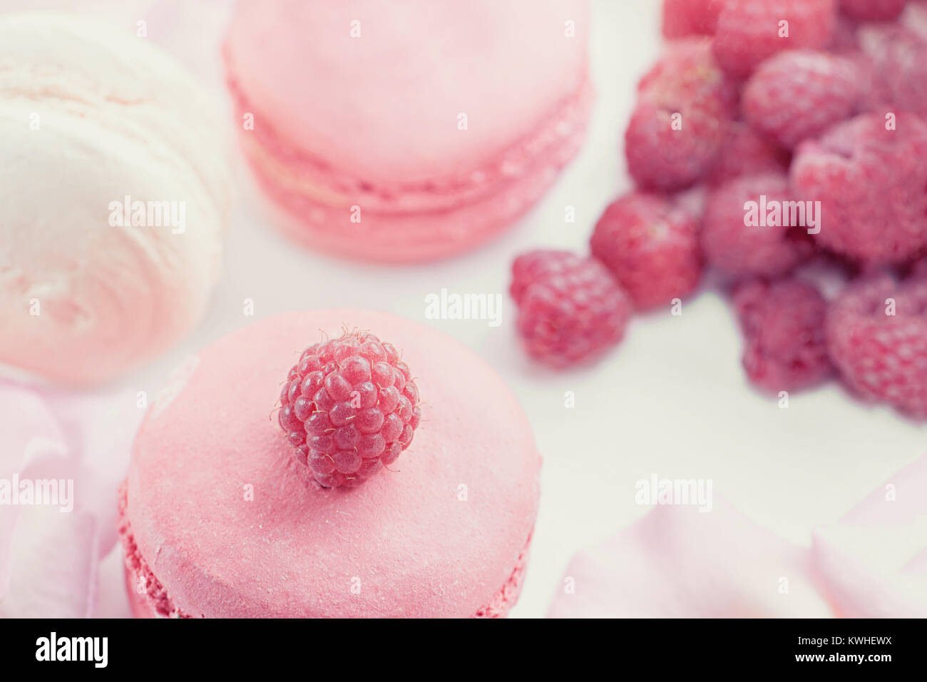 Pink raspberry macaroons with ripe raspberries. Selective focus. Dessert close-up - Stock Image