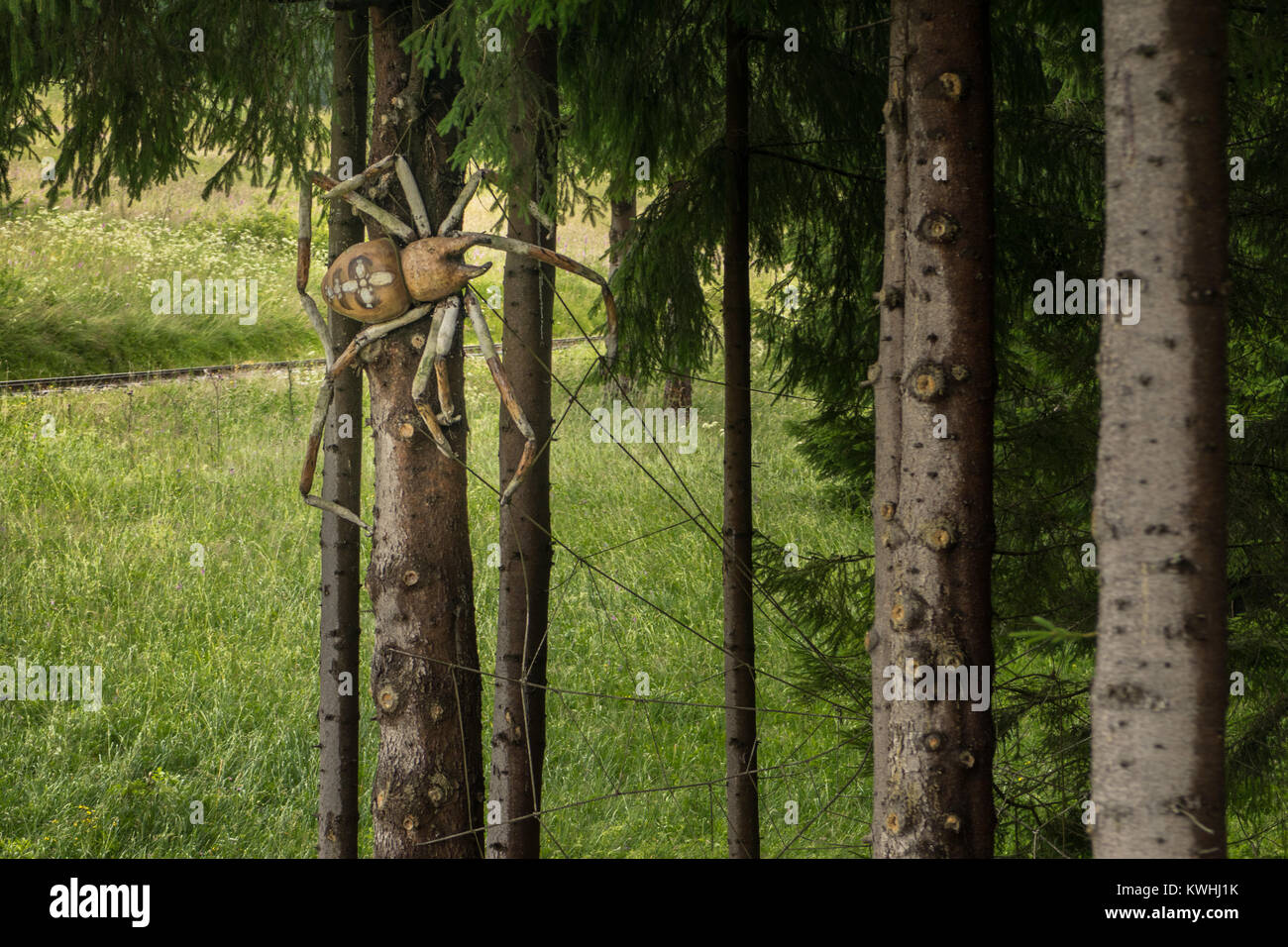 Gigantic spider on the tree - Stock Image
