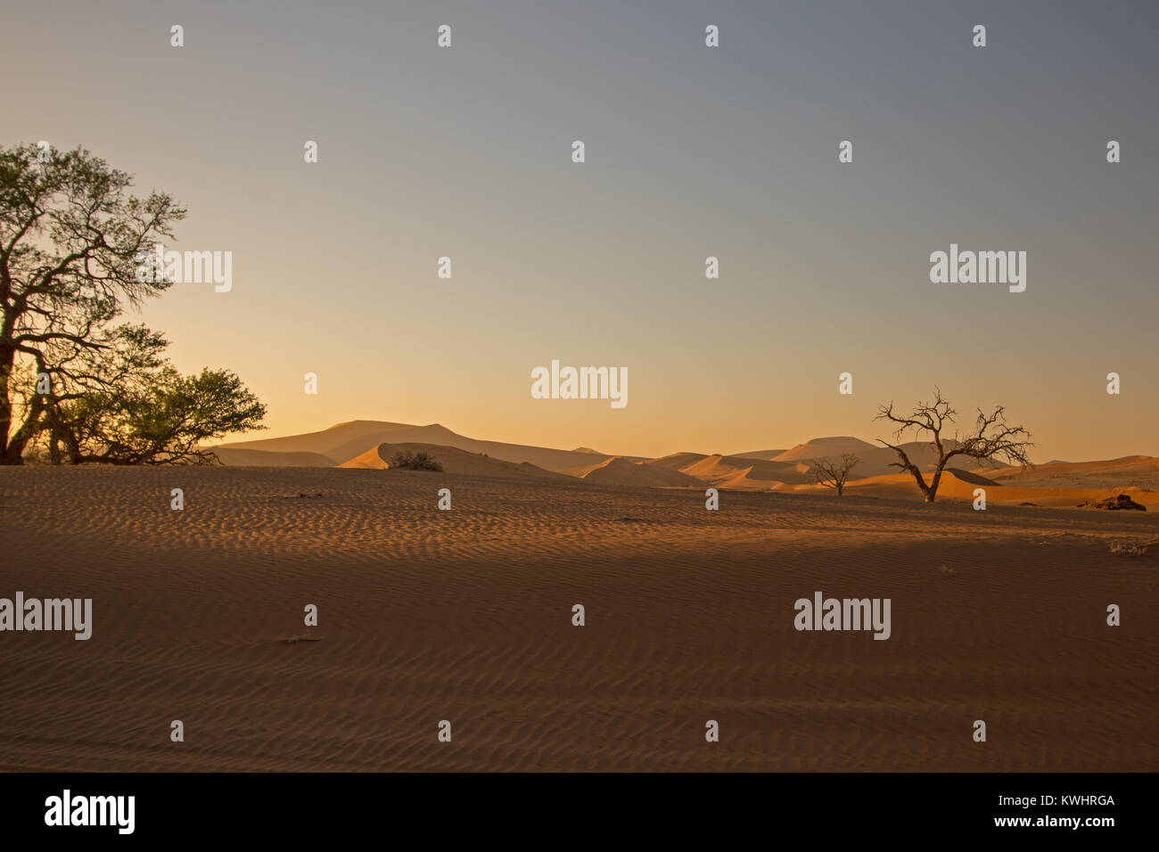Beautiful sunrise in the sand dunes of Sossusvlei in the Namib desert in Namibia. Lovely ghostly soft lighting. - Stock Image