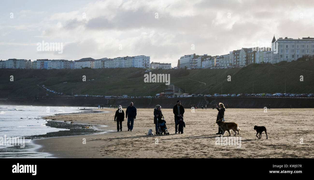 Walking the dogs on the lovely sandy beach at North Bay, Scarborough, UK on a sunny December day with the sea close - Stock Image