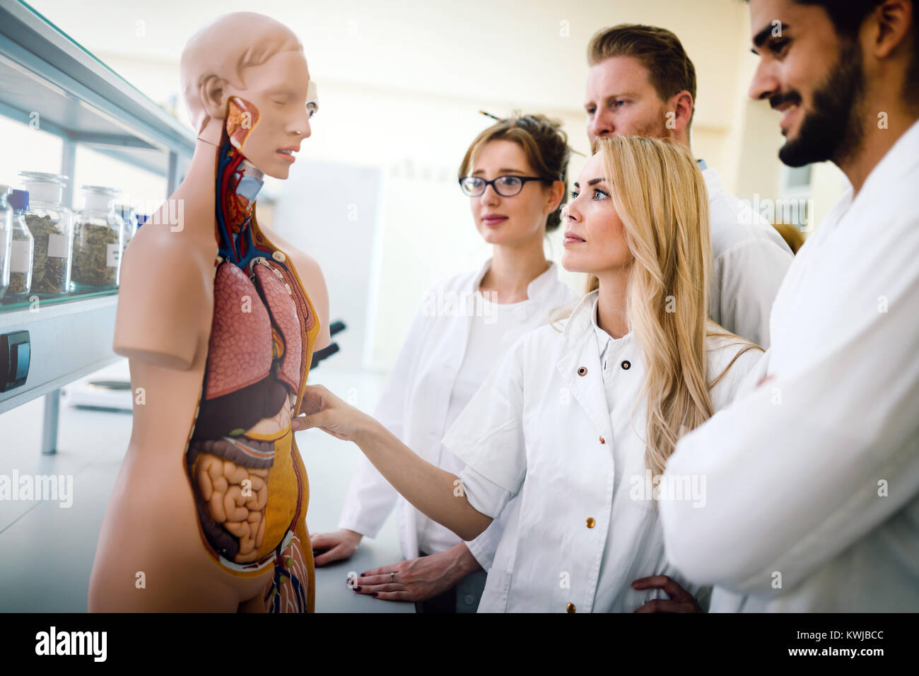 Students With Anatomical Model Stock Photos & Students With ...