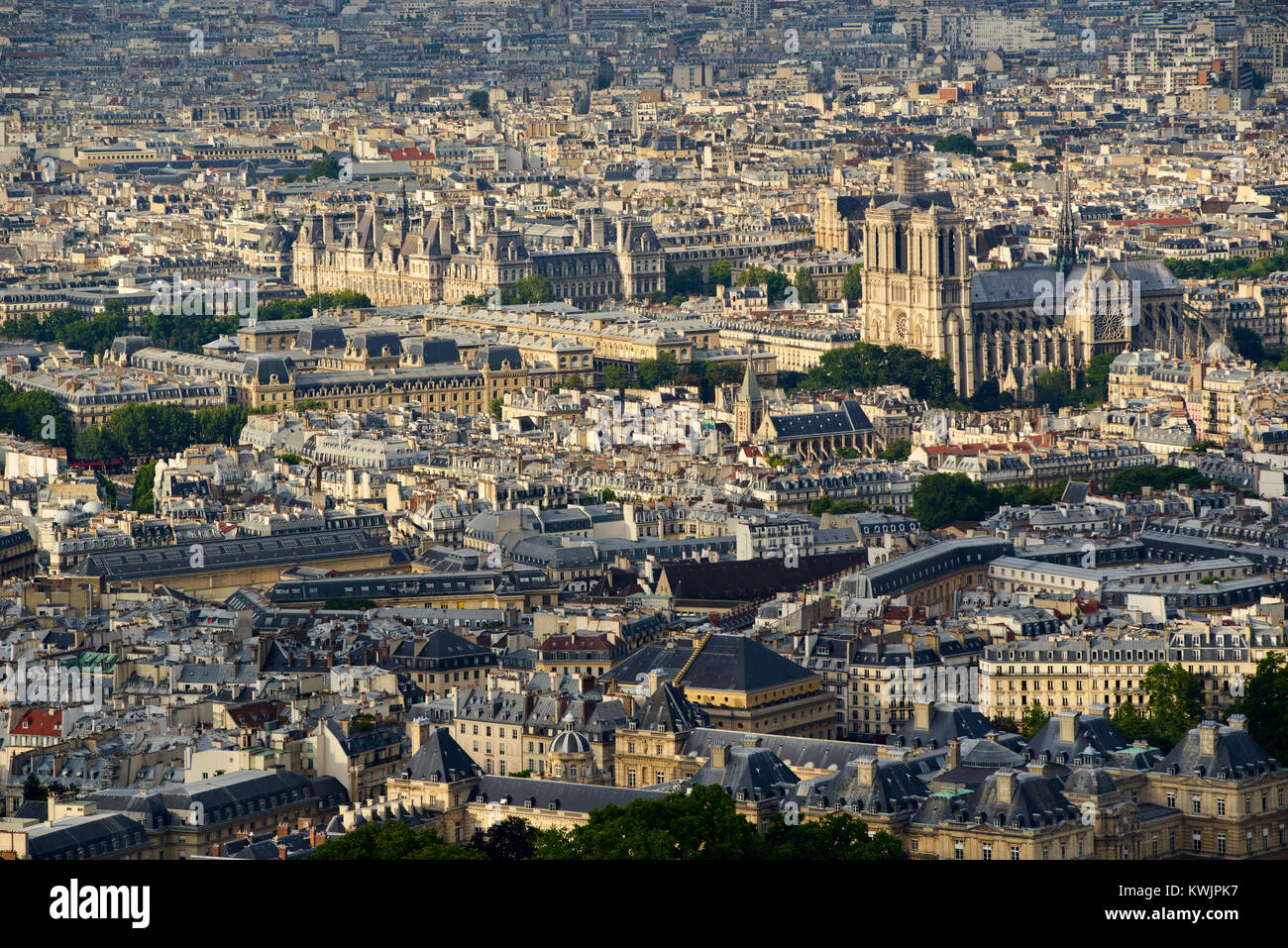 Aerial view on Paris rooftops at sunset with Notre Dame de Paris Cathedral. 4th (Latin Quarter) and 6th Arrondissment, - Stock Image