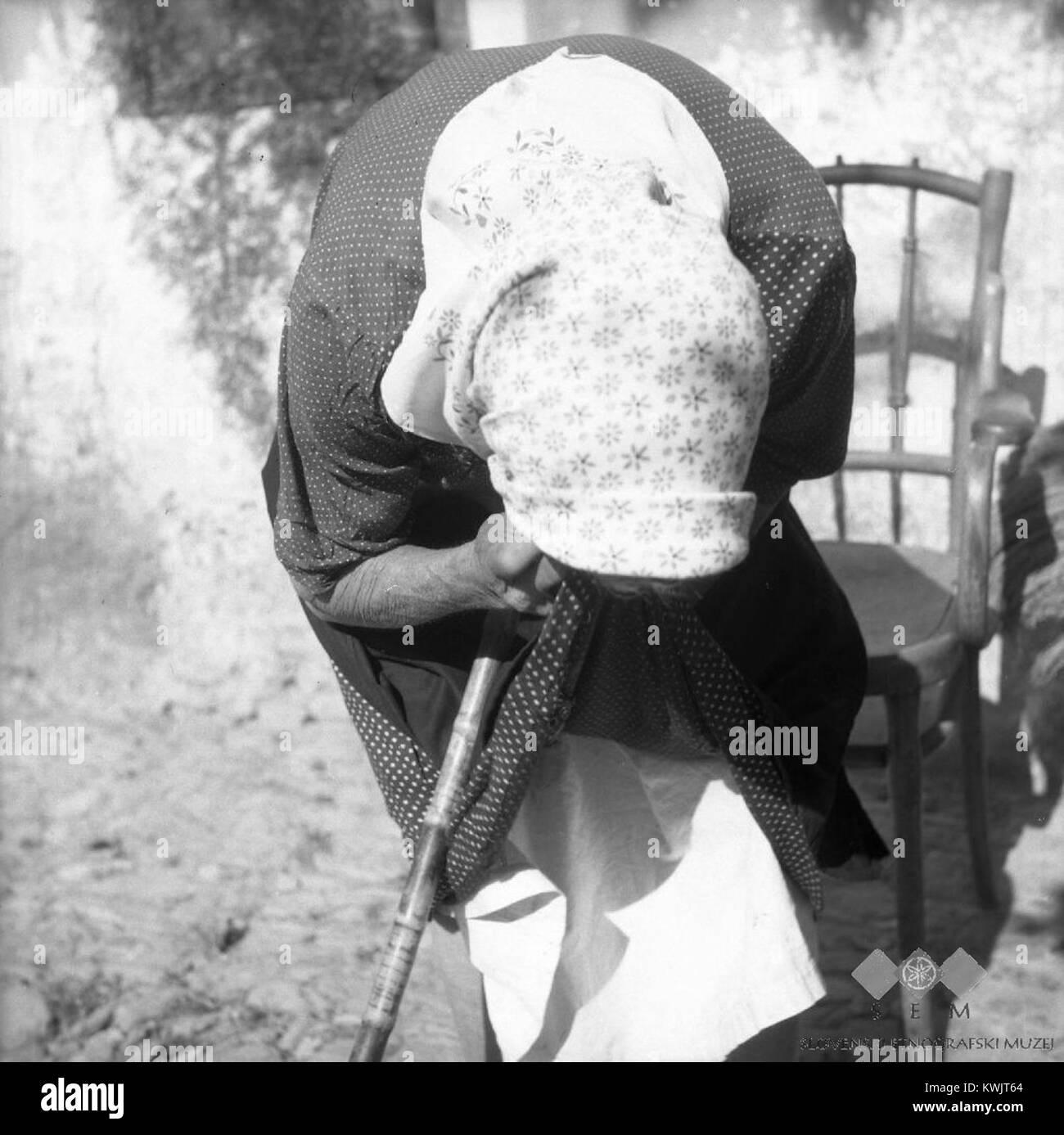 Zdravljenje 'zaurokov - popluj ušlerik' rob krila, Škrljevo 1961 Stock Photo