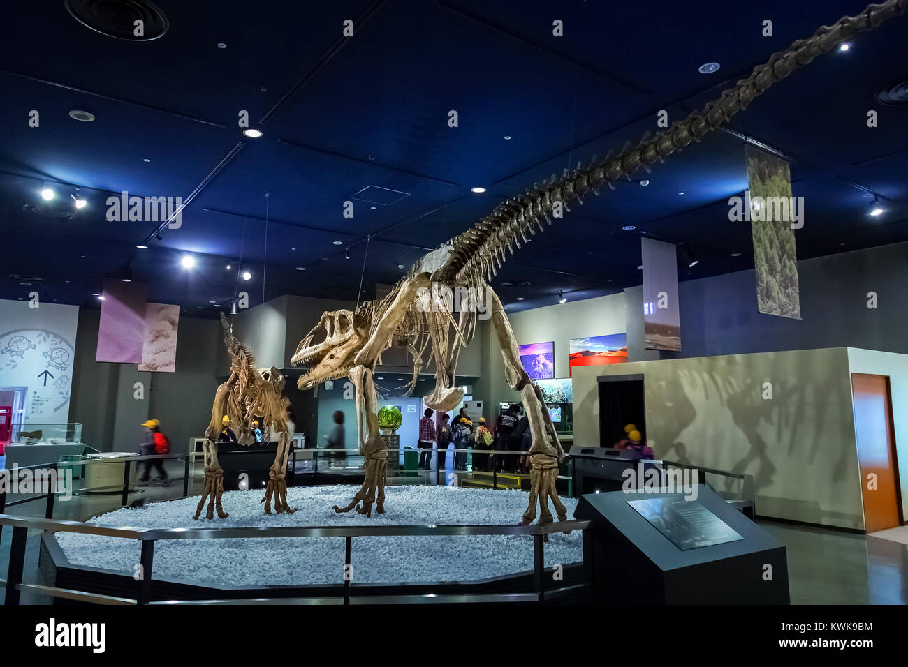 NAGOYA, JAPAN - NOVEMBER 18, 2015: Dinosaur skeletons displayed at the first floor of Nagoya City Science Museum, Stock Photo