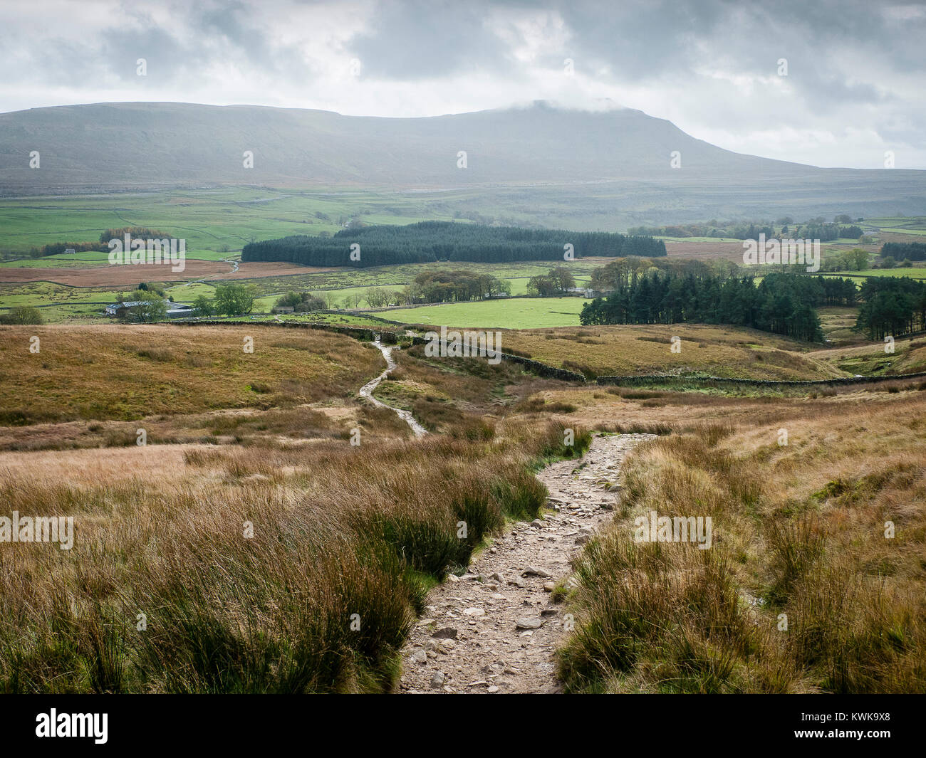 Path up to Whernside, with view to Ingleborough, 3 peaks, Yorkshire Dales, England, UK - Stock Image