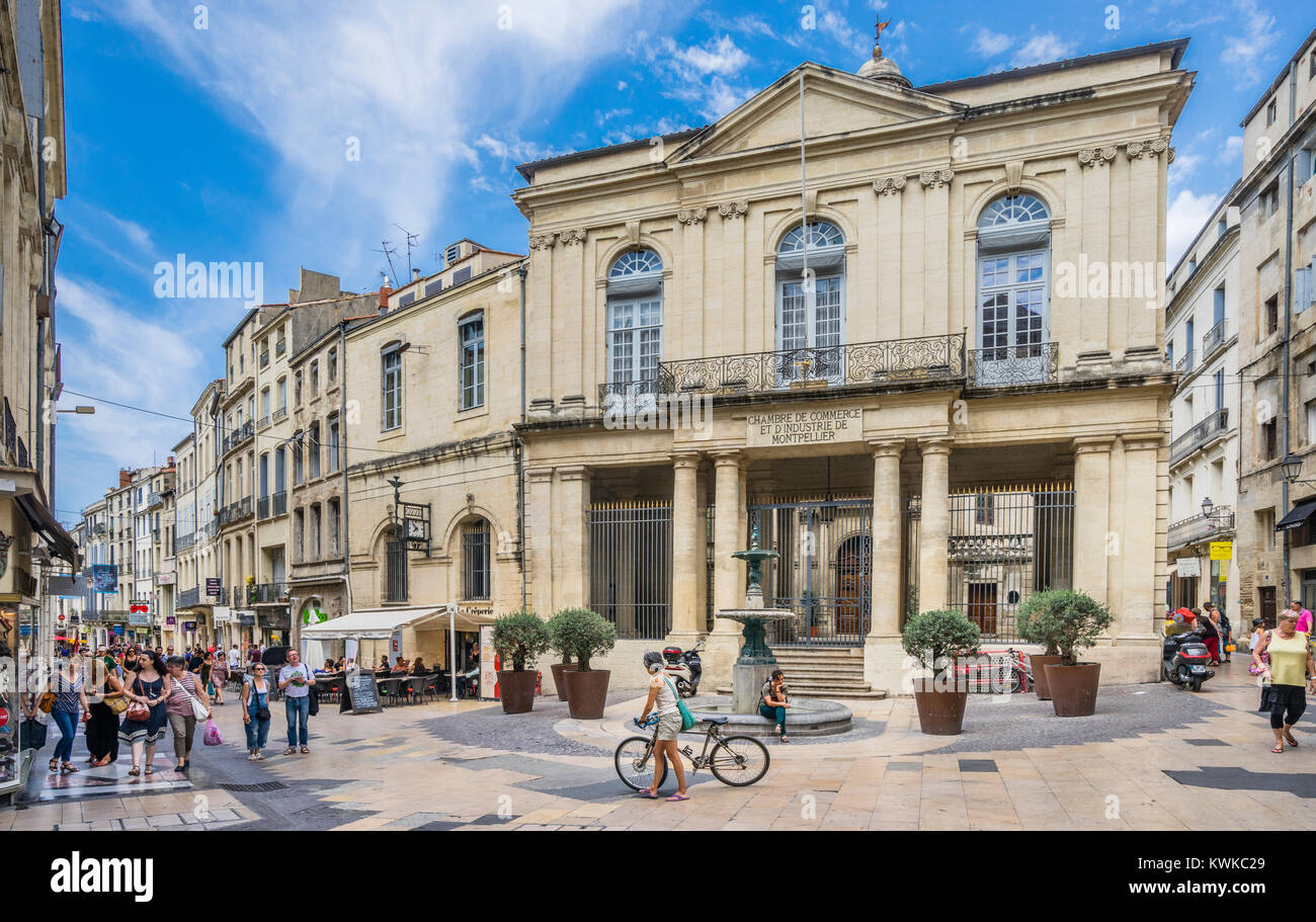 France, Hérault department, Montpellier, Hotel Saint-Côme, seat of the Montpellier Chamber of Commerce - Stock Image