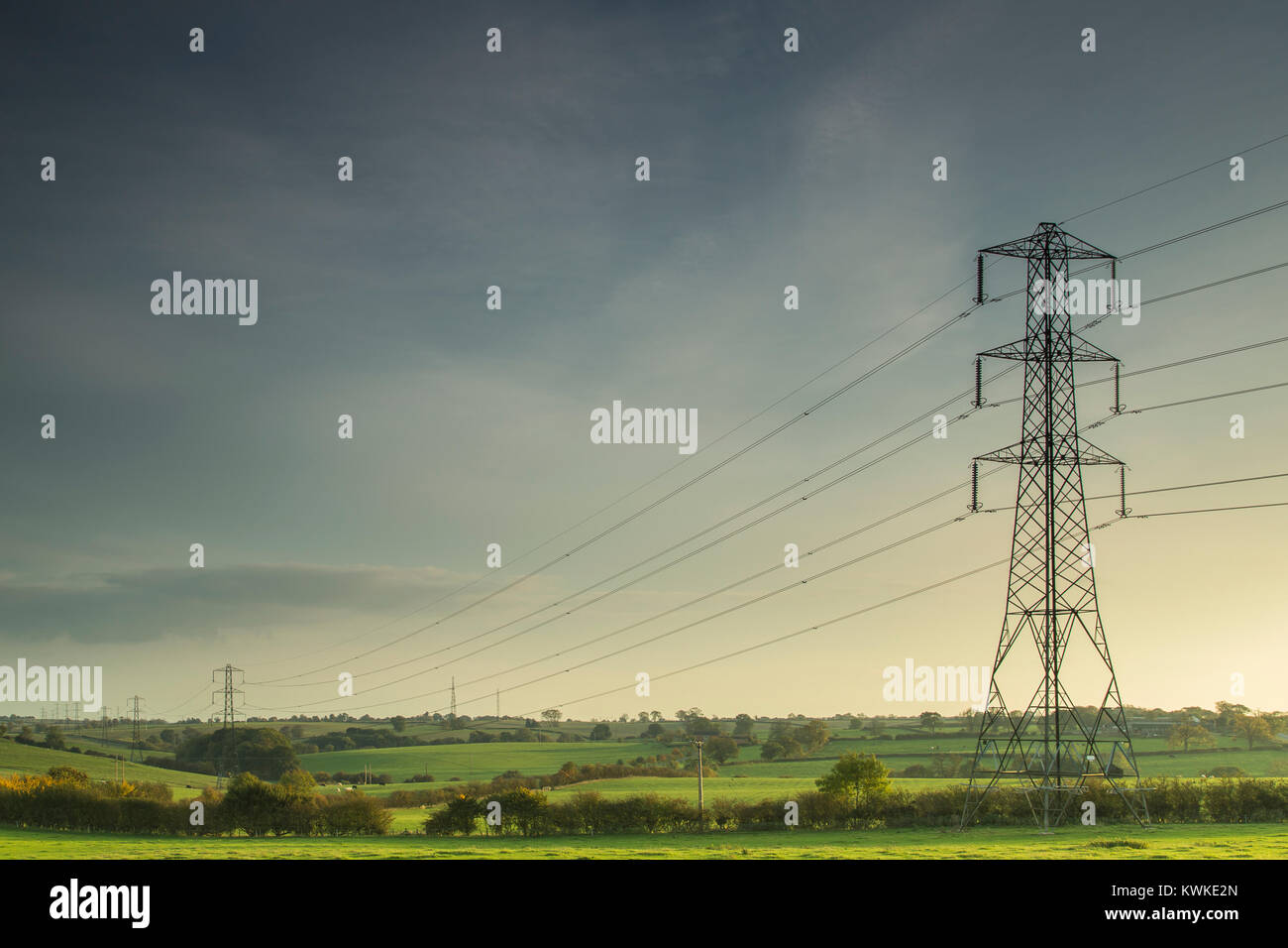 Electricity lines carrying power across the countryside of England as the evening sun begins to set. - Stock Image