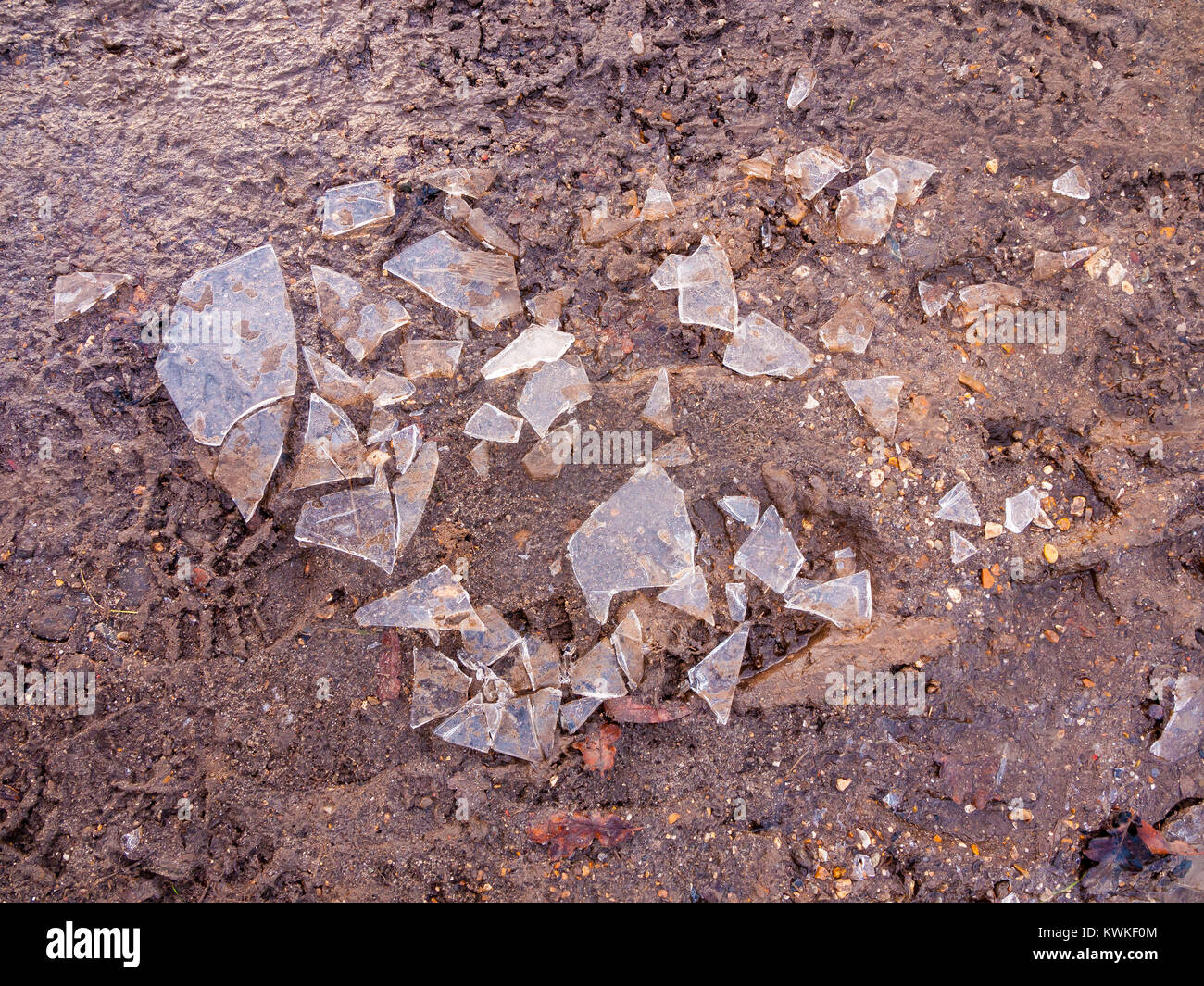 Puddle Floor Stock Photos Amp Puddle Floor Stock Images Alamy